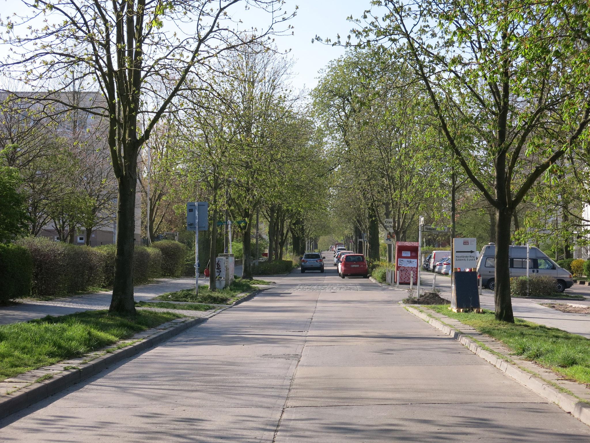 Tipp 3: Wuhle-Hönow-Weg, Kastanienallee