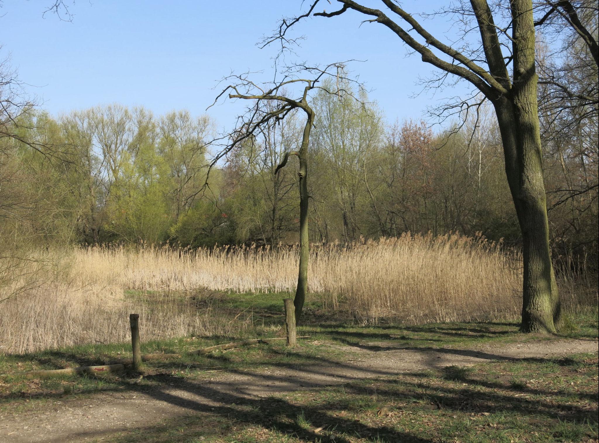 Sa, 05.06., 14.00 Uhr: Kleingewässertour mit den Grünen durch Marzahn-Hellersdorf. Startpunkt: U-Bhf. Hönow