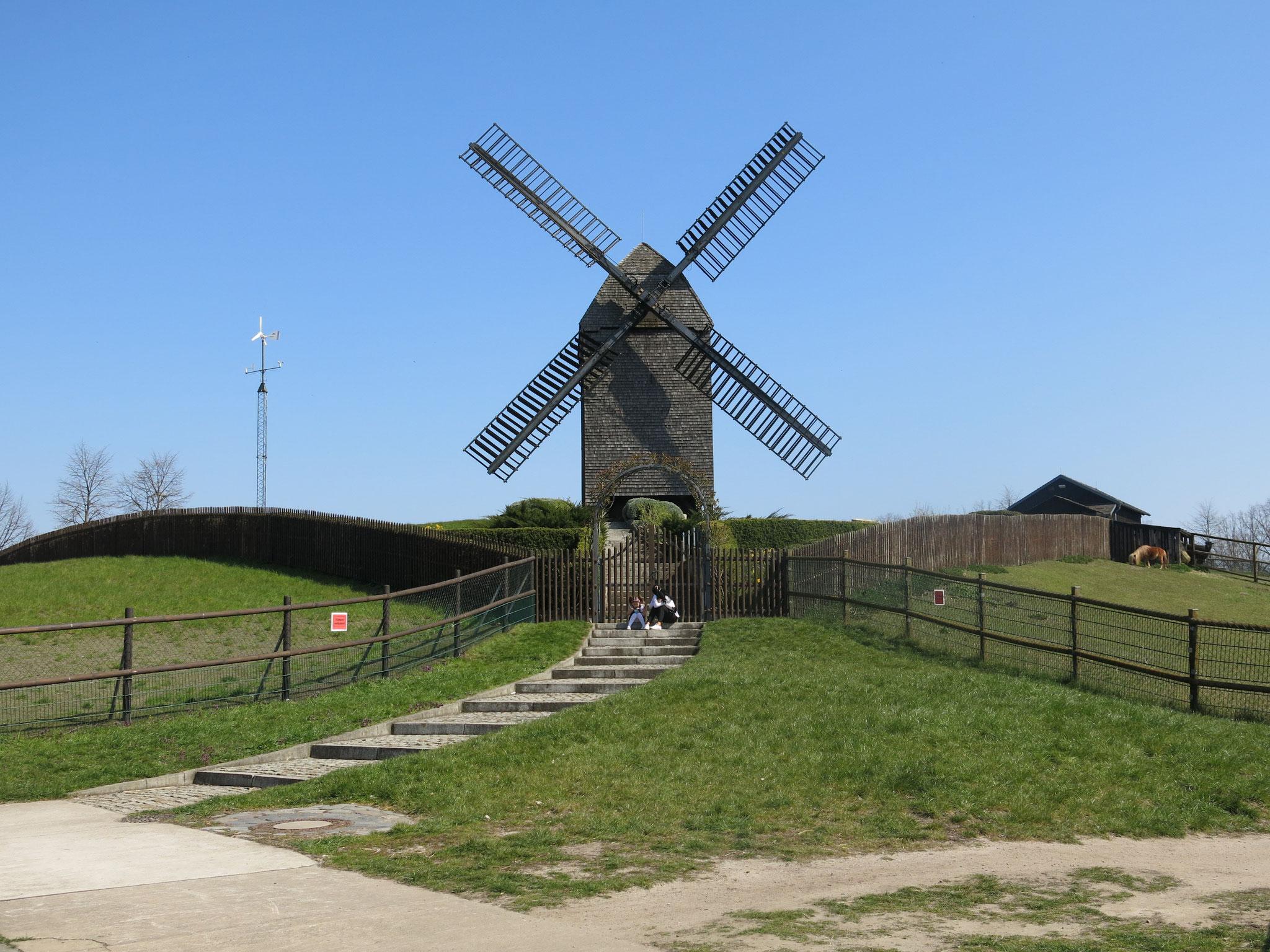 Tipp 10: Alt-Marzahn, Bockwindmühle