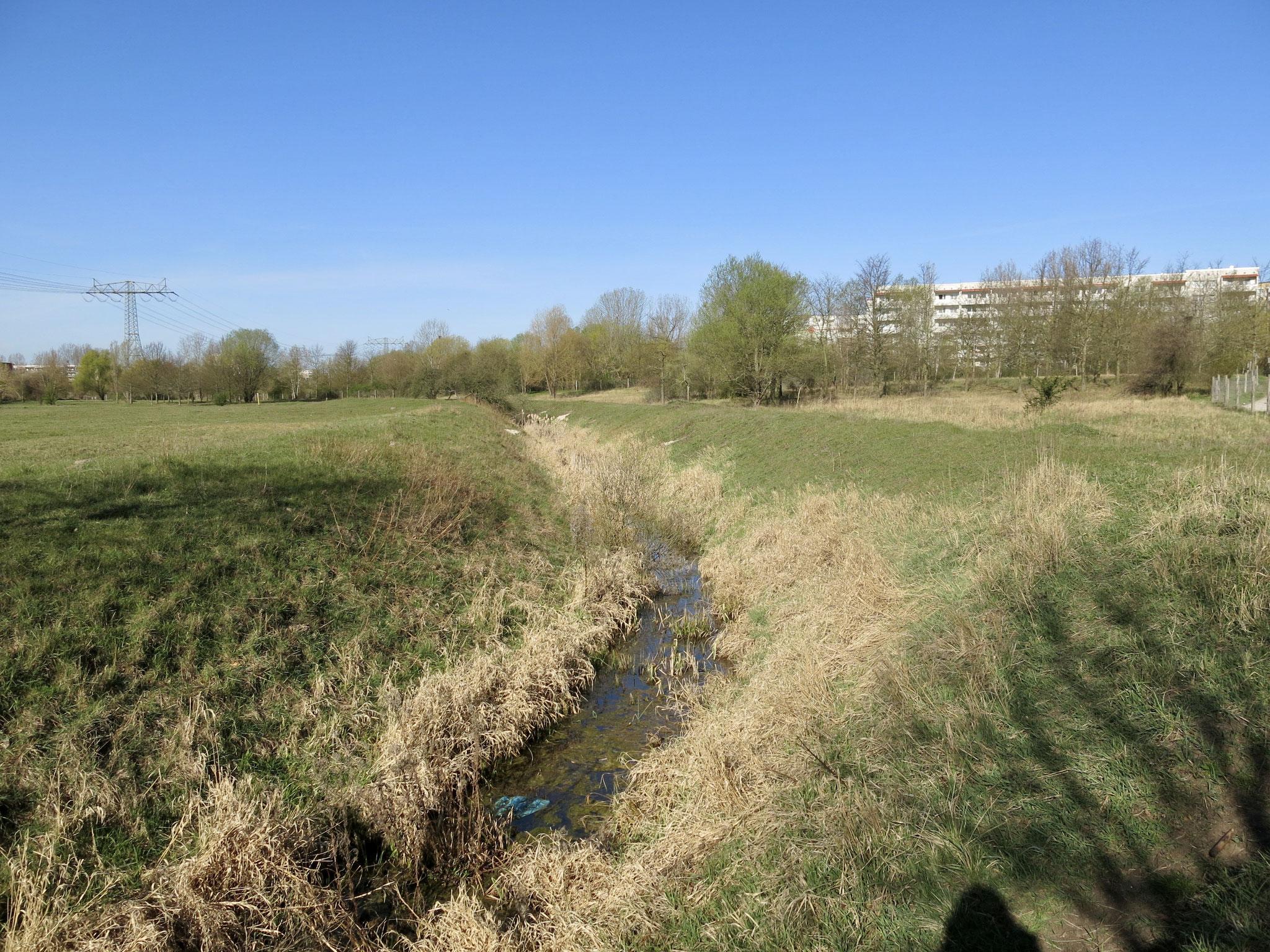 Tipp 1: Nördlicher Wuhletal-Wanderweg, Eichepark