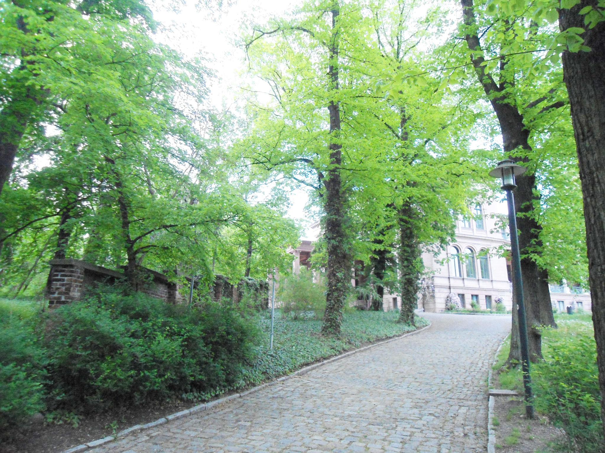 Wenige Reste der alten Friedhofsmauer befinden sich noch an der Zufahrt zum Schloss. © Heinrich Niemann