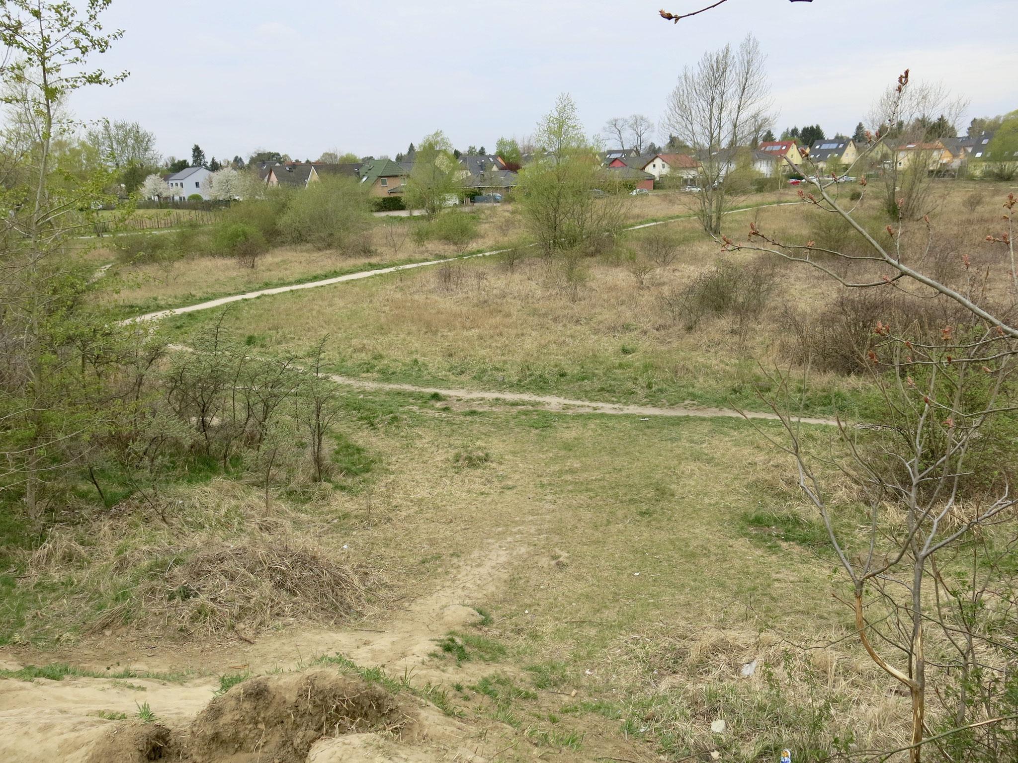 In Mahlsdorf-Nord soll zwischen Landsberger Straße und Bisamstraße eine Gemeinschaftsschule errichtet werden.