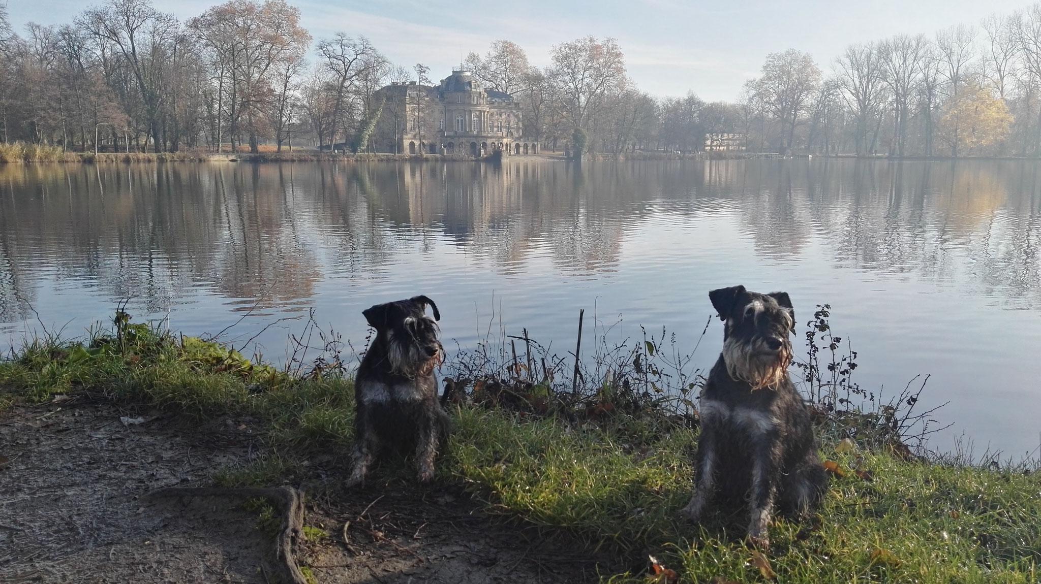 Brünni und Pia am Monrepos-Schloss, November 2017