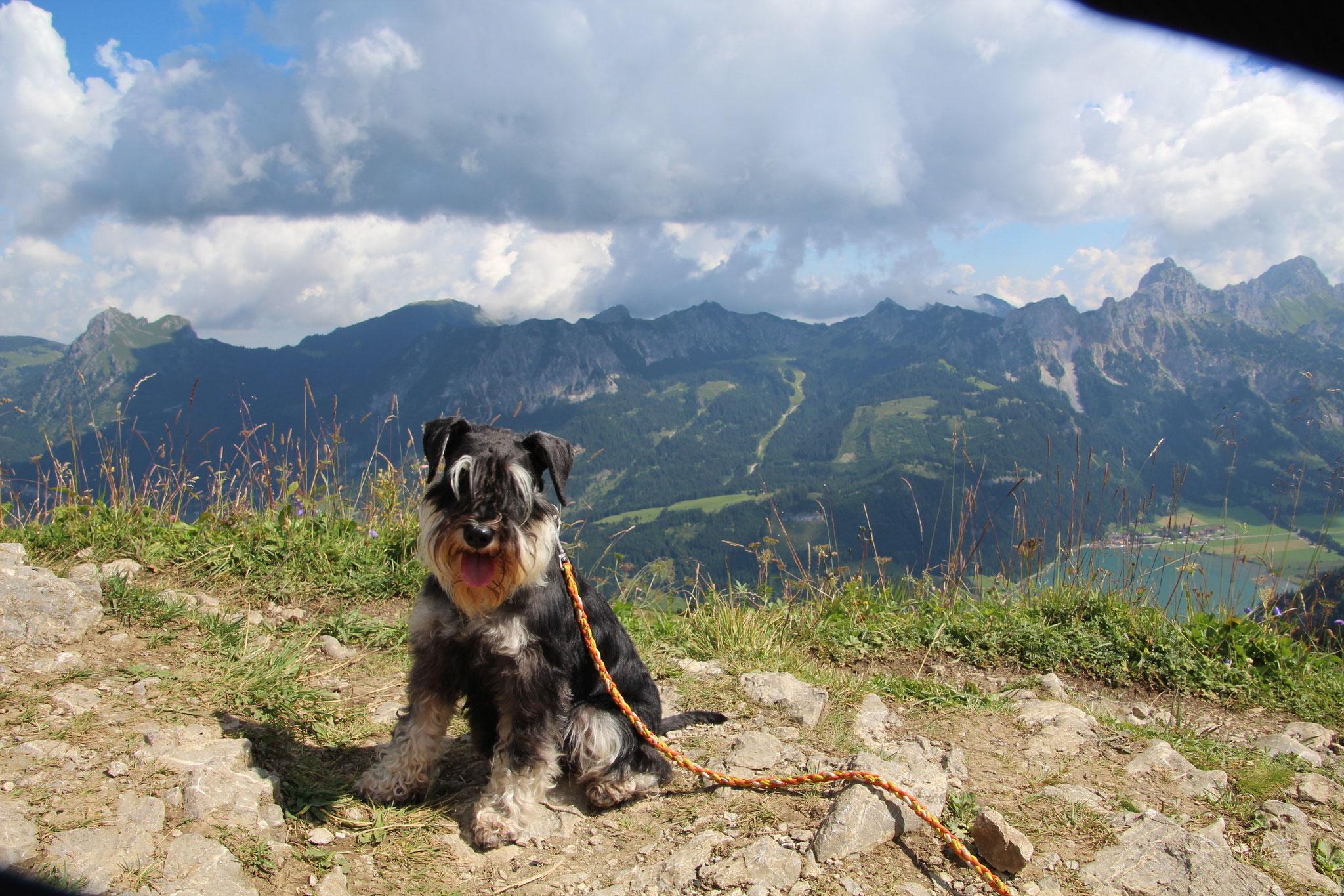 Pia auf dem Neunerköpfle im Tannheimer Tal