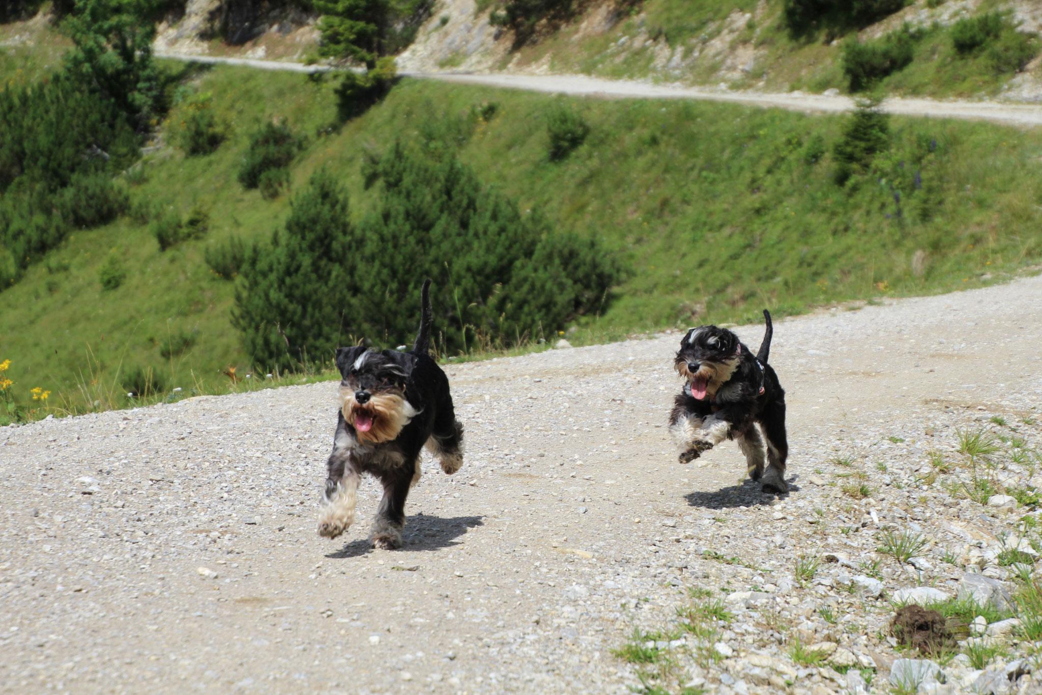 Pia und Brünni beim Bergwandern
