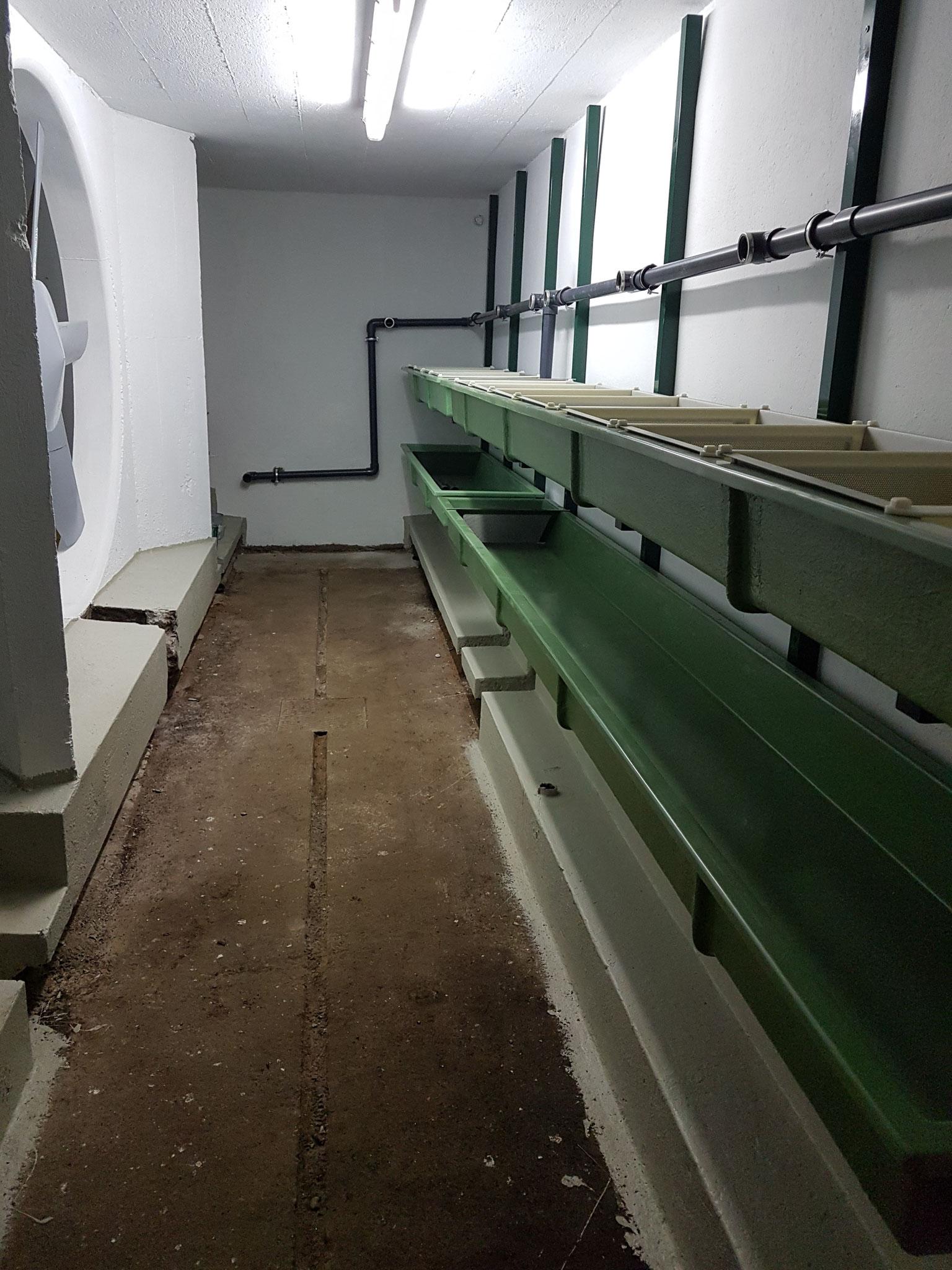 08.09.2018 Montage Brutrinnen und Frischwasserleitung