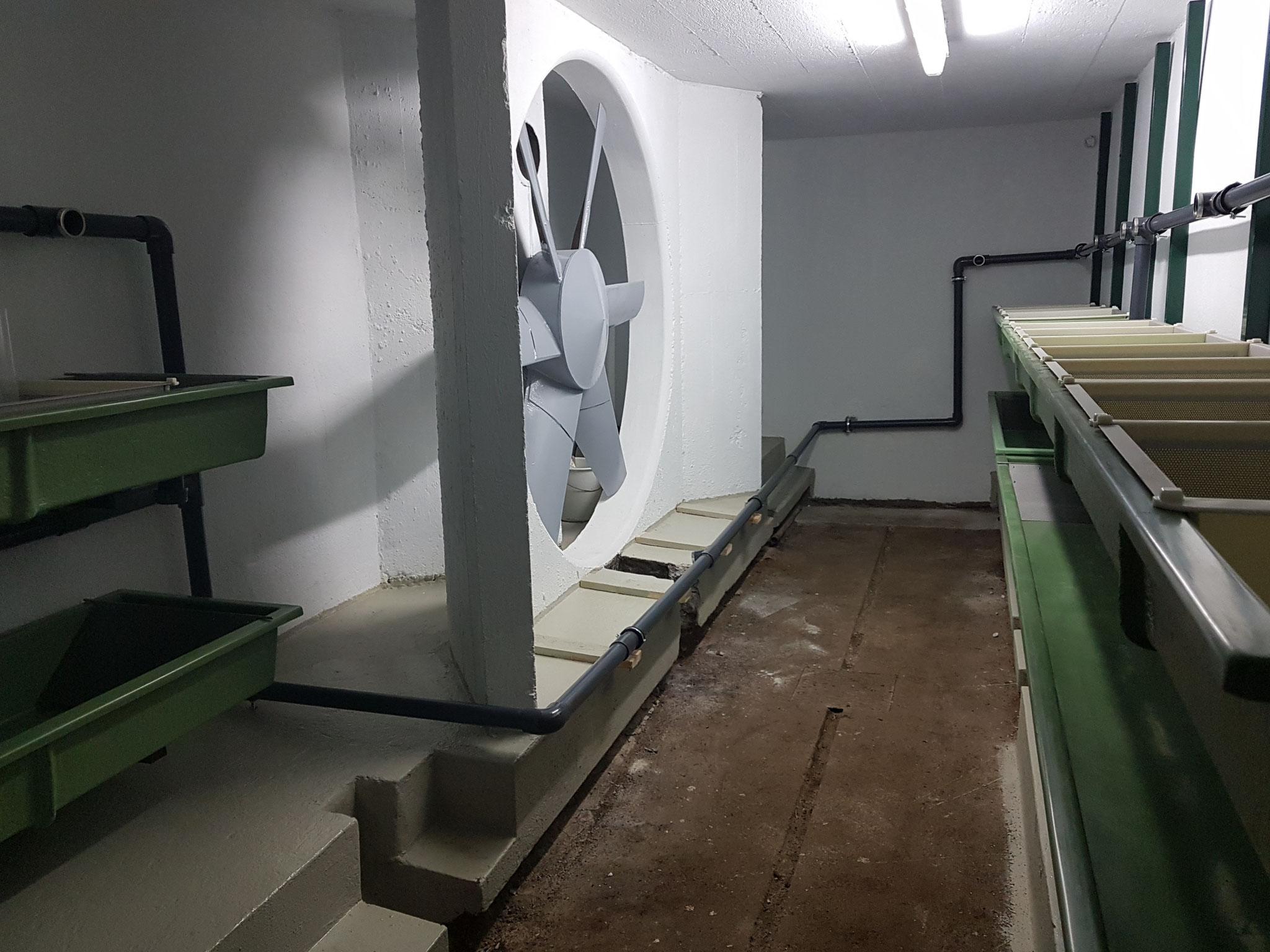 09.09.2018 Fertigstellung Frischwasserleitung