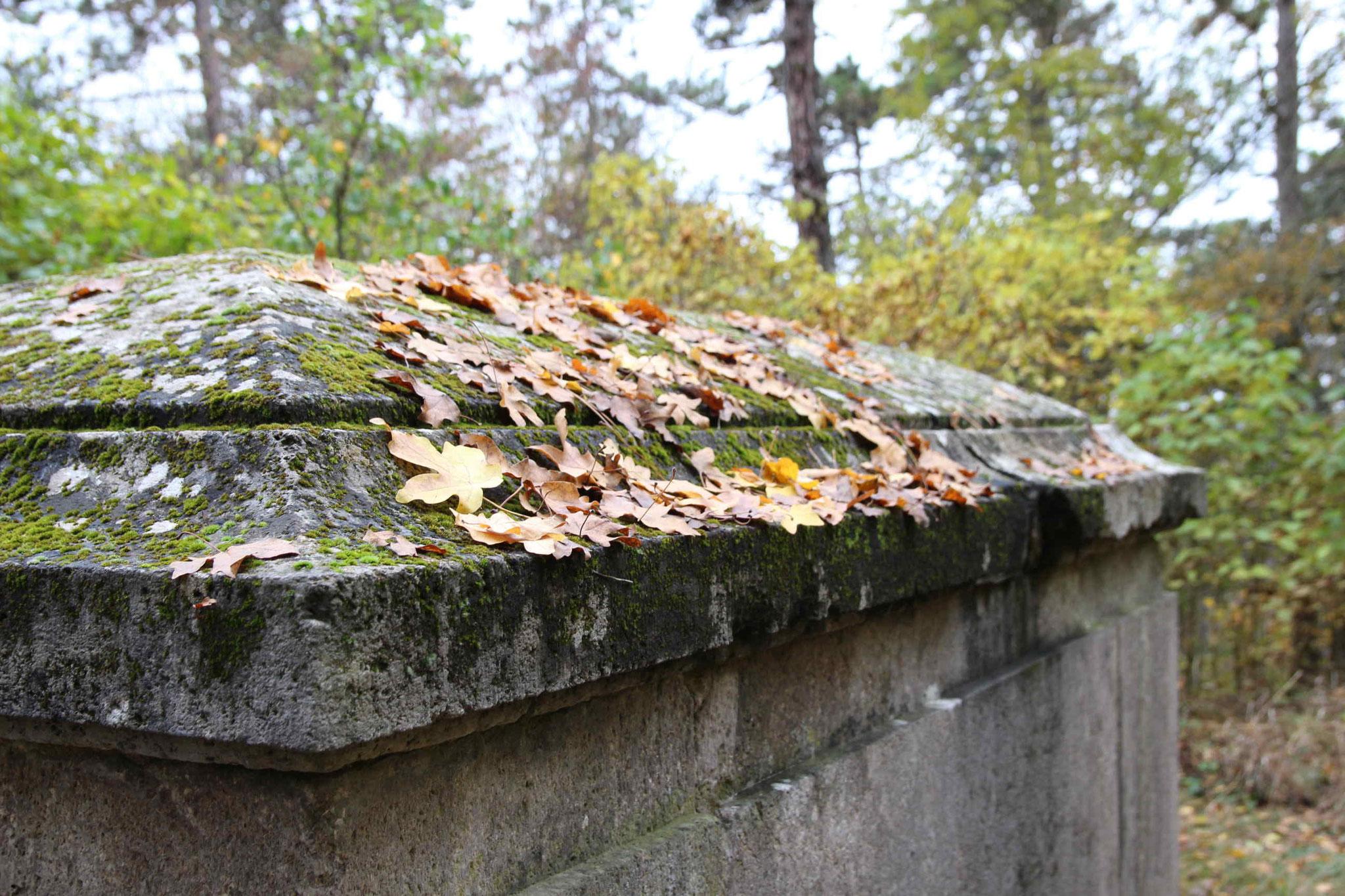 Kurzer Abstecher zum Grabmal von Georg Graf von Werthern-Beichlingen