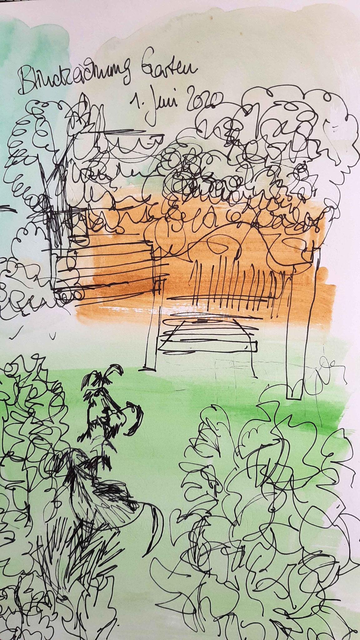Silkes Blick in den Garten ohne Hinsehen