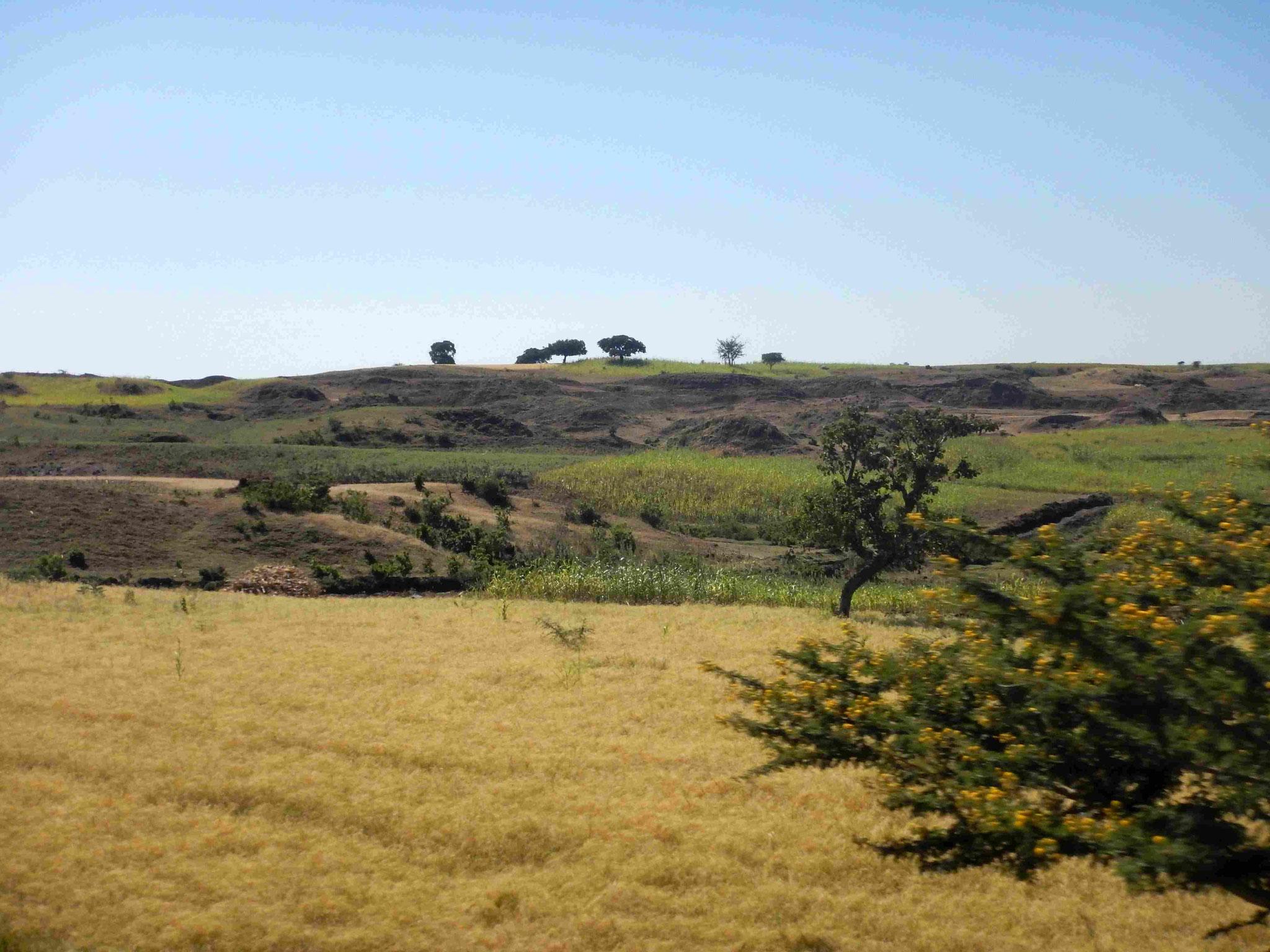 Voyage Séjour Road Trip Trek Trekking Randonnée en Ethiopie. Trip Road de Gondar à Bardhar en Ethiopie