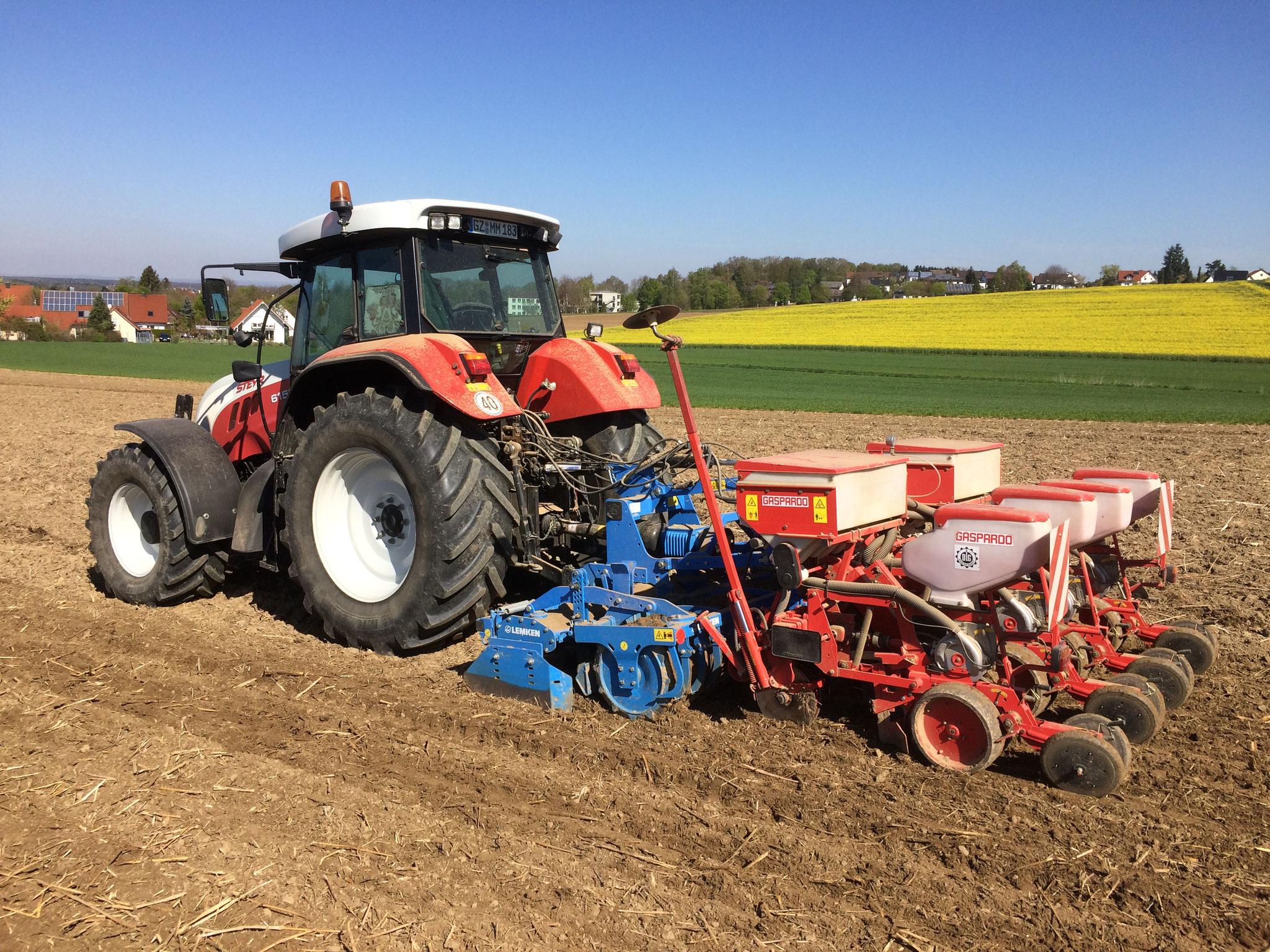 Mulchsaat verhindert Bodenerosion