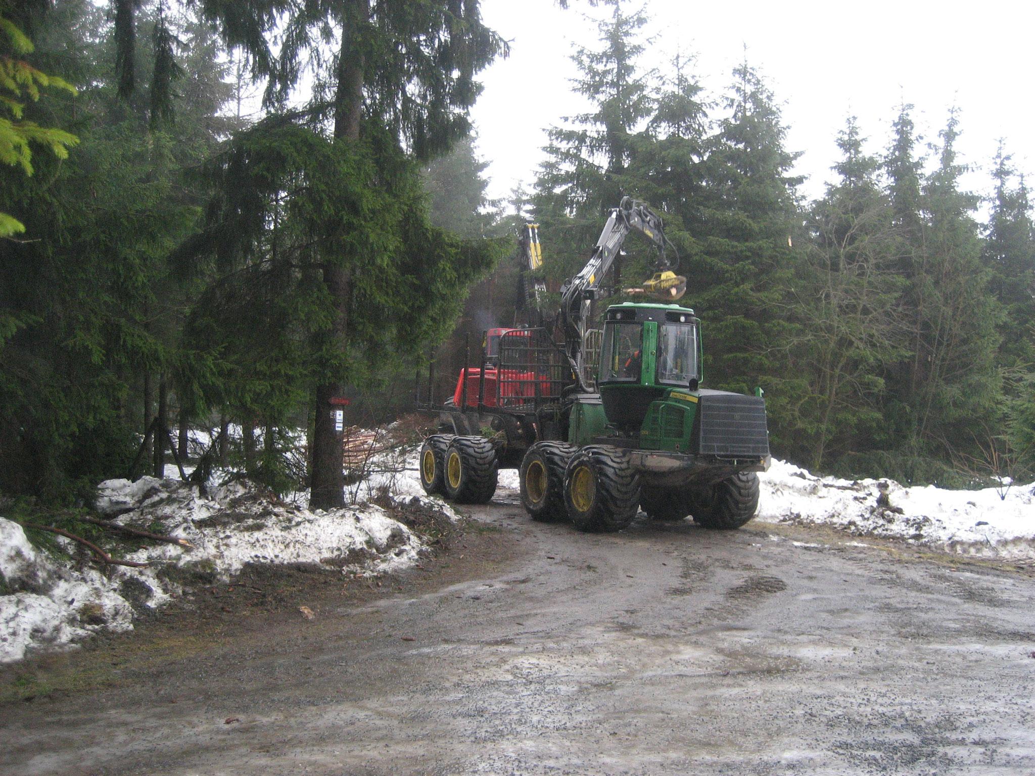 Harvestereinsatz mit Rückezug