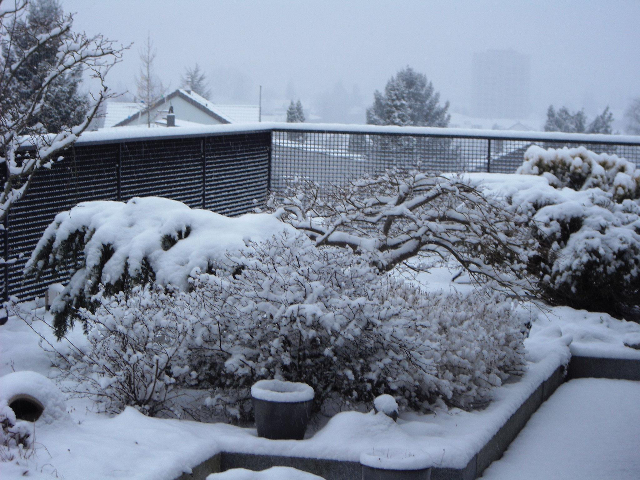 März / 6 / Dachgarten Süd-West