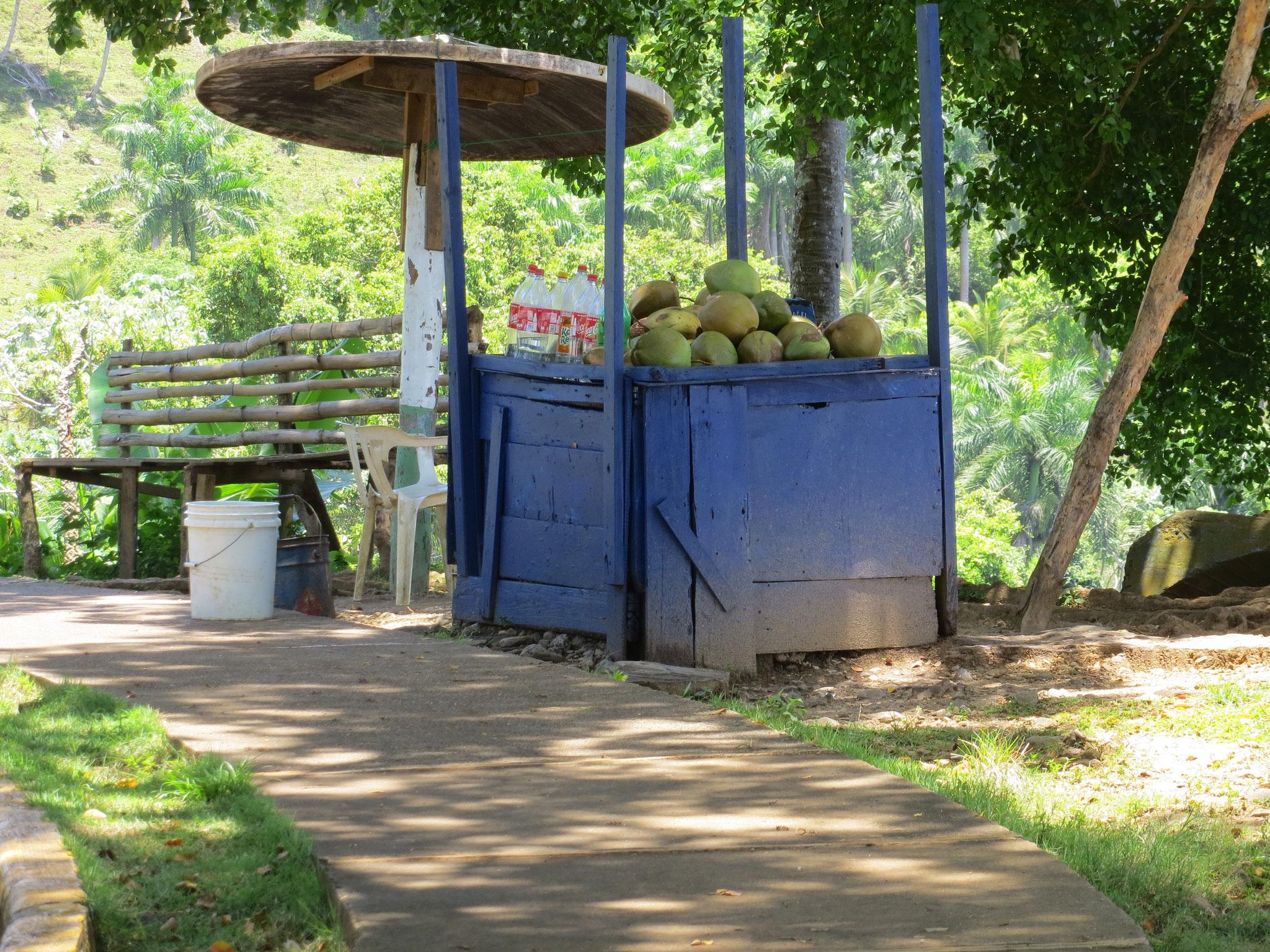 Kokoswasser-Stand