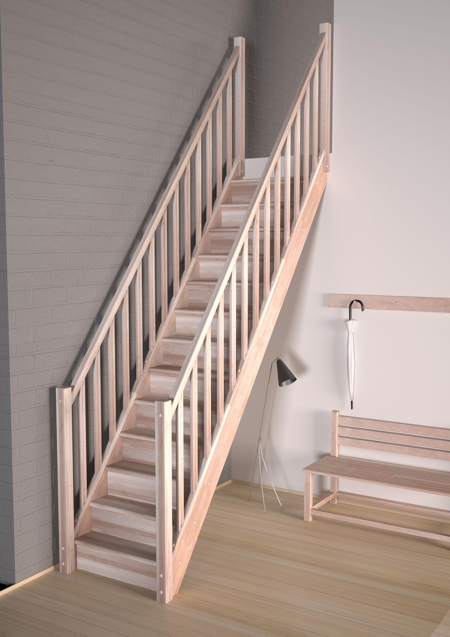 Tradi Eco escalier droit avec rampe supplémentaire