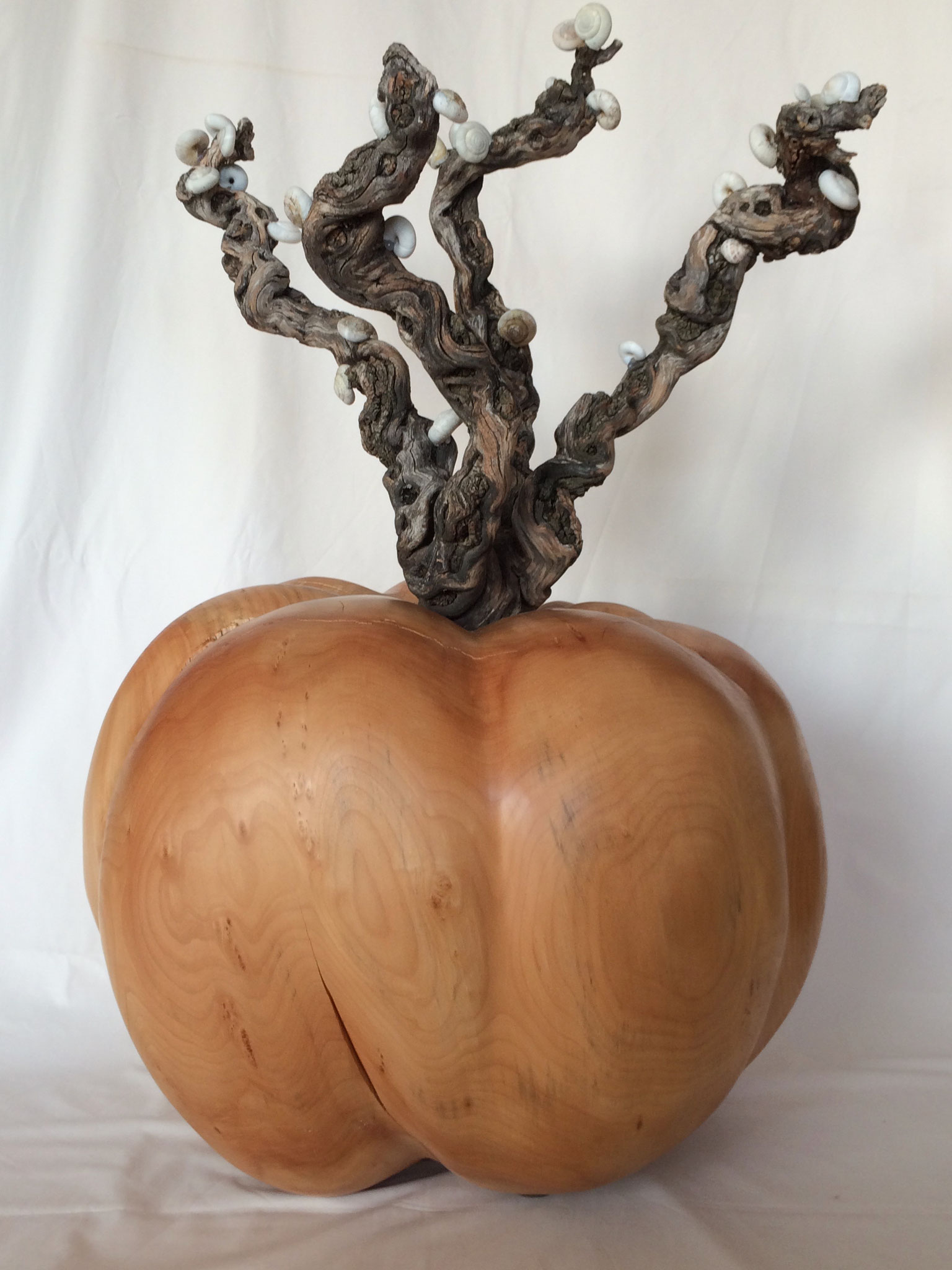 Pumpkin with vine covert with  snails (65x90x65)