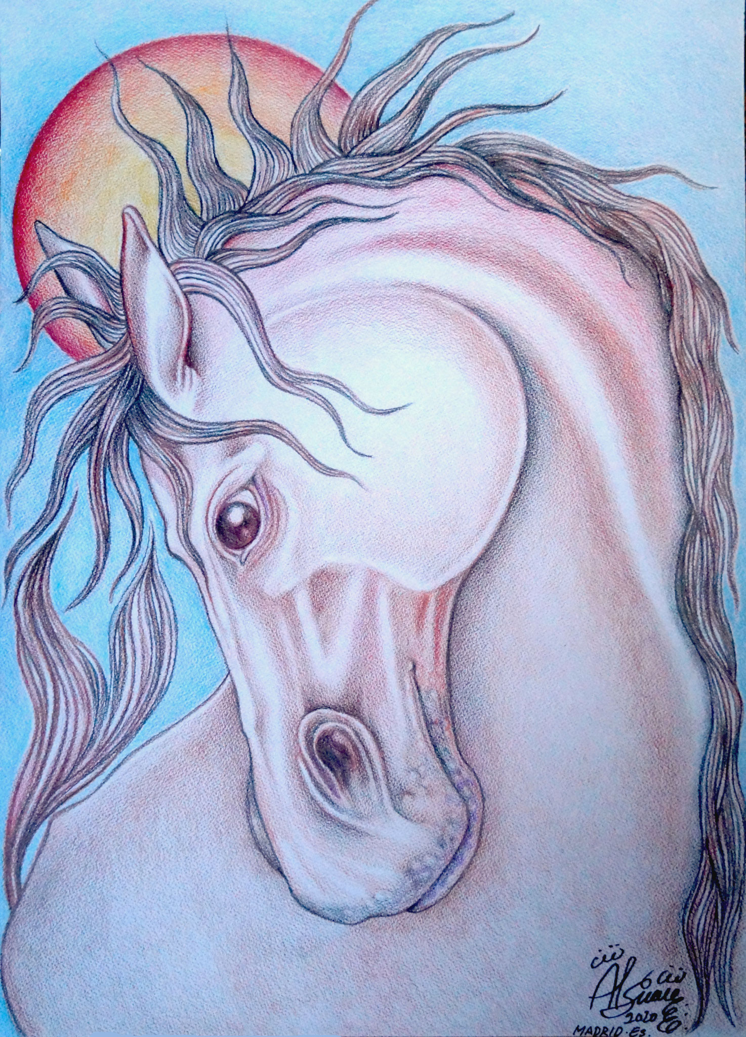 Cabeza de caballo / Técnica mixta / 42 x 29, 7 cm / 2020