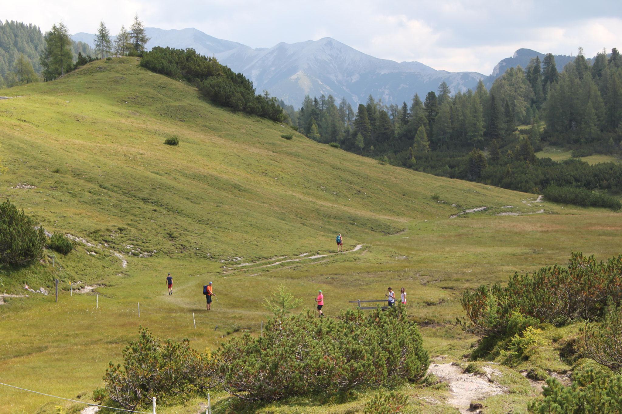 wunderschöner Trail über das Almplateau Richtung Interhütte