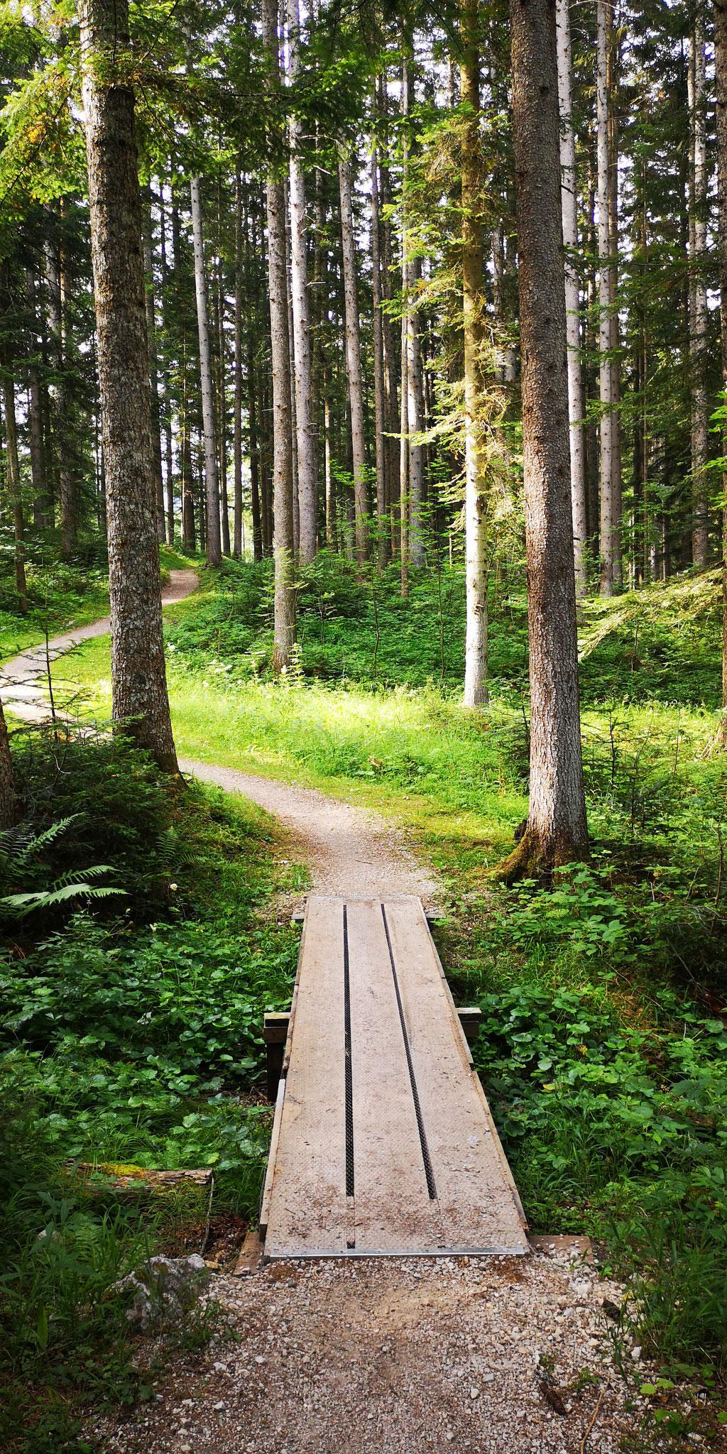 Wanderweg Richtung Heilbrunn