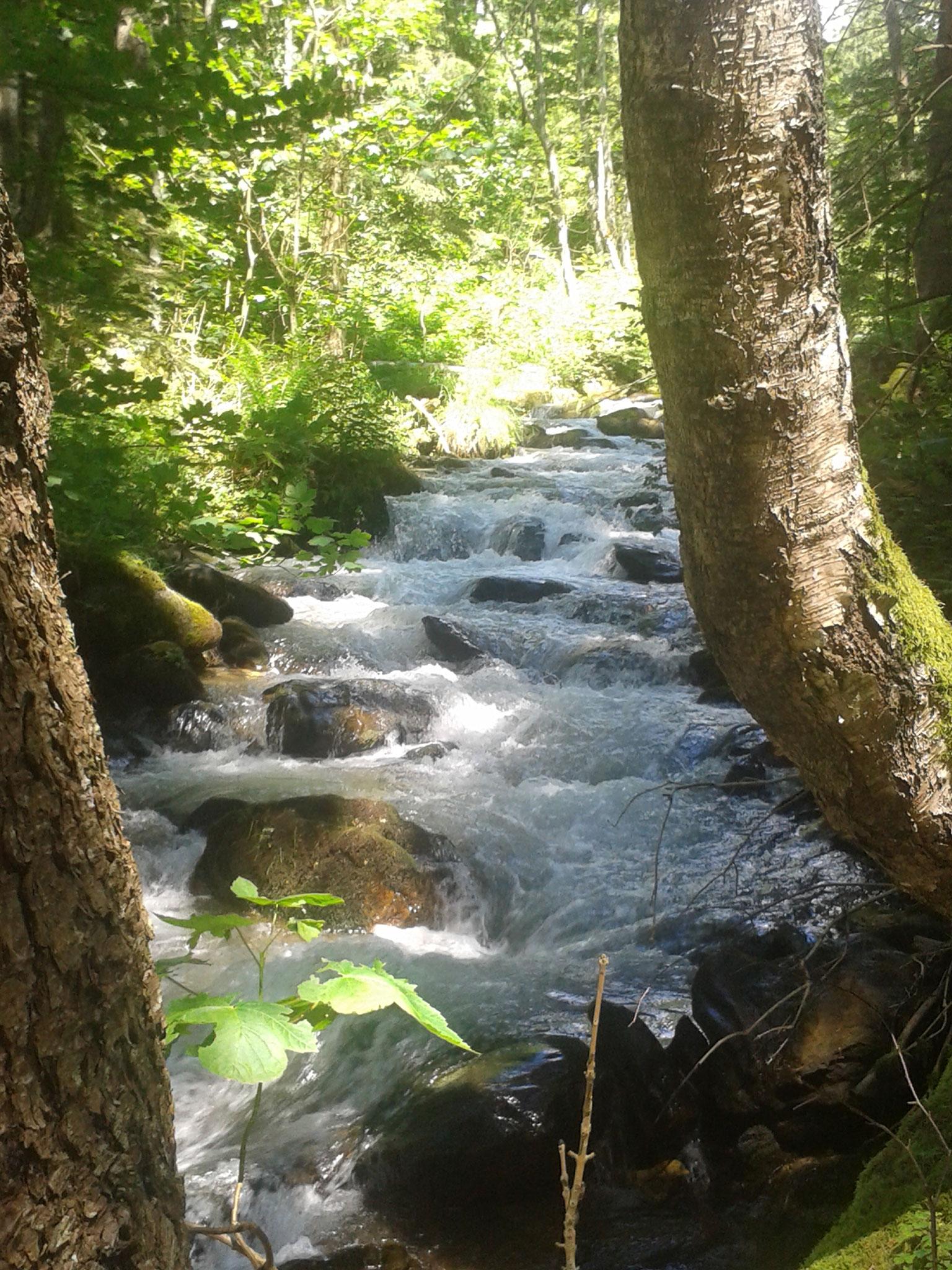 Wasser Wander Weg von St. Oswald Richtung Bad Kleinkirchheim