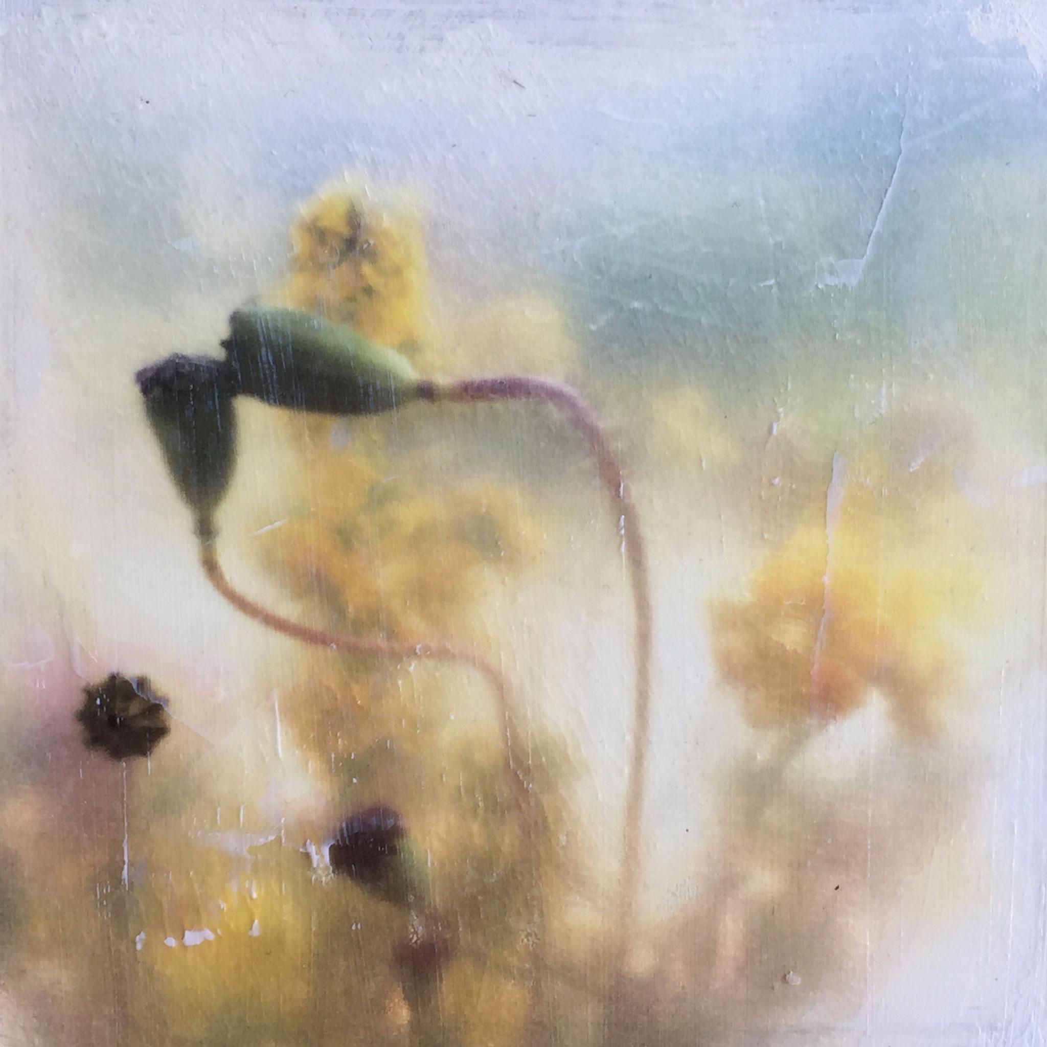 Poppy 5_Kleinformat (Fototransfer)