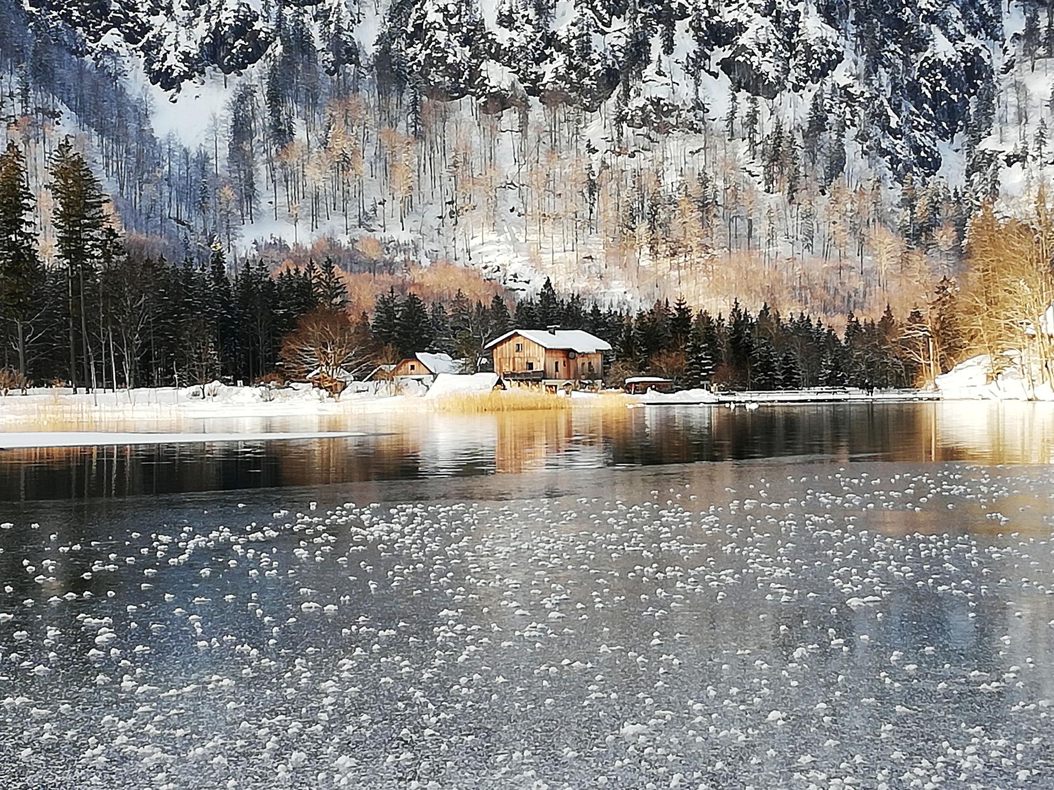 """Helga Hofer - """"Winter am Almsee"""" - 20 Pkt."""