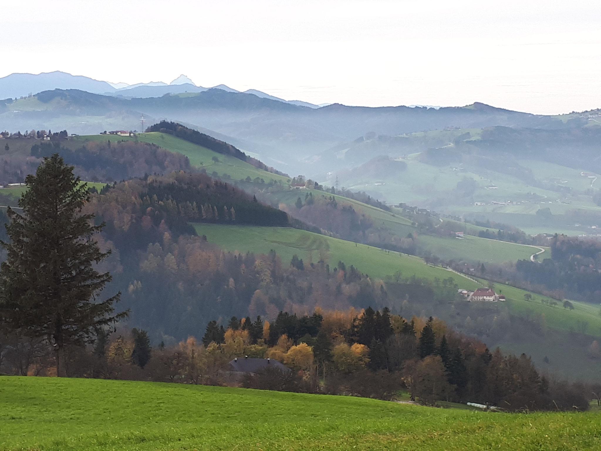 "Franz Wittinghofer - ""Herbst"" - 16 Pkt."