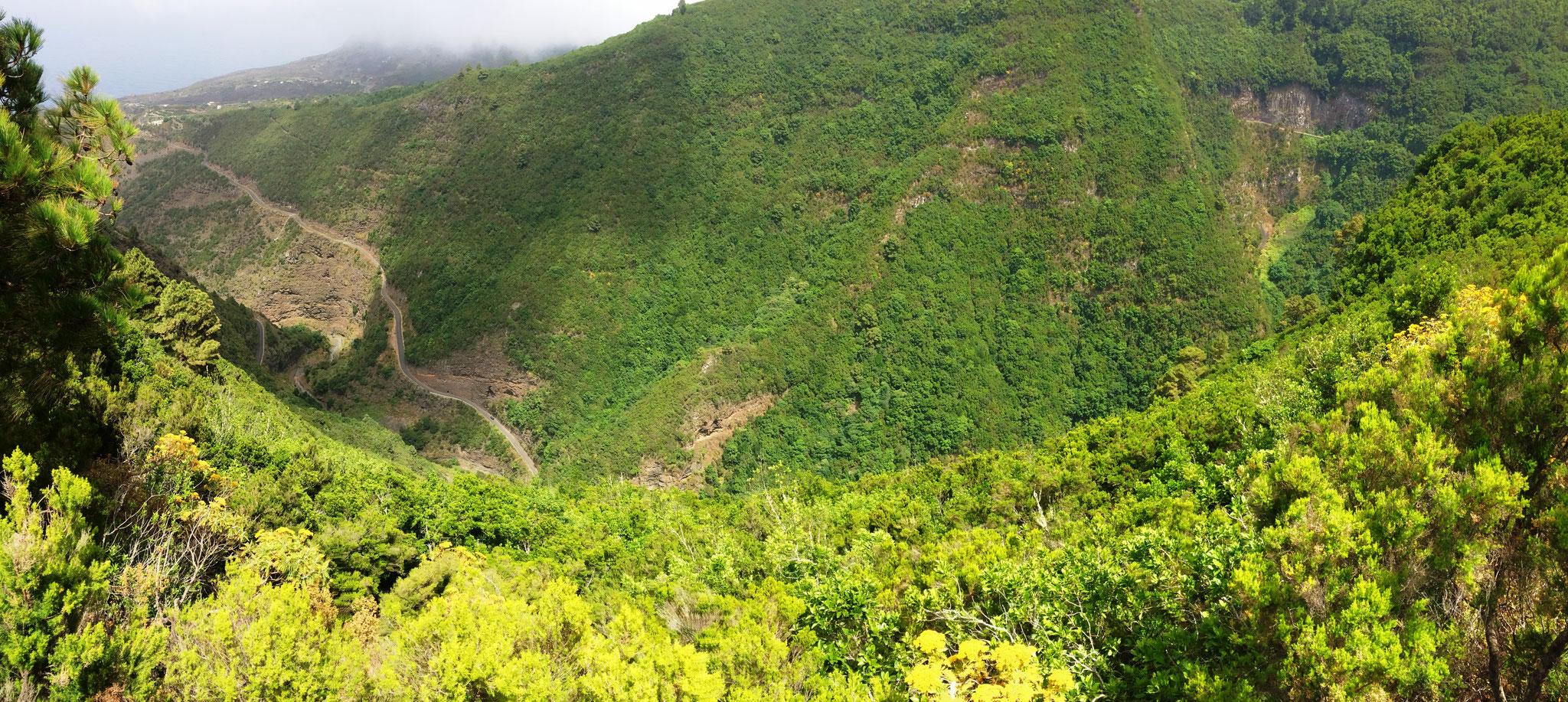 La Palma - Barranco Los Gallegos Barlovento