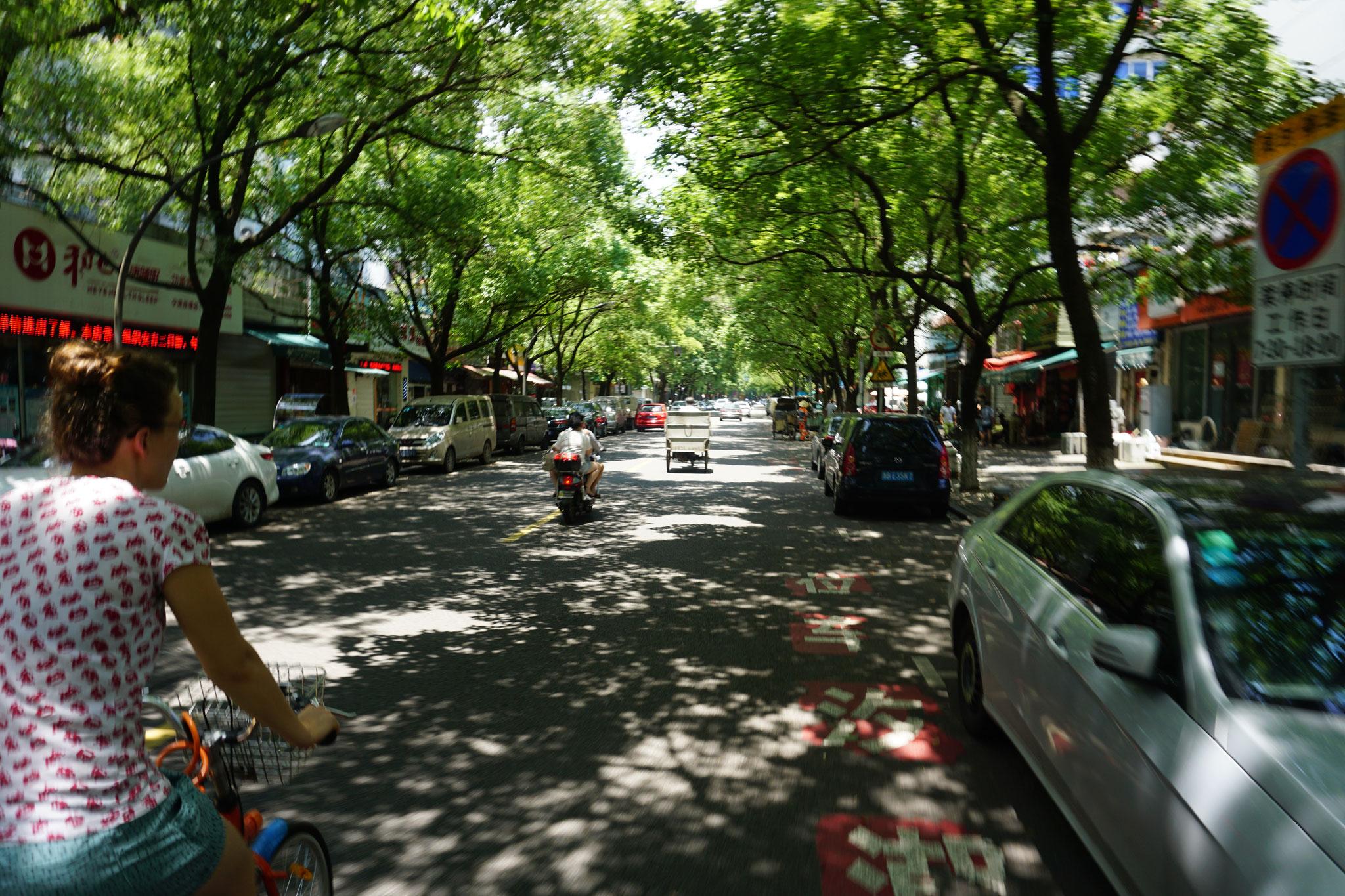 Grüne Straßen