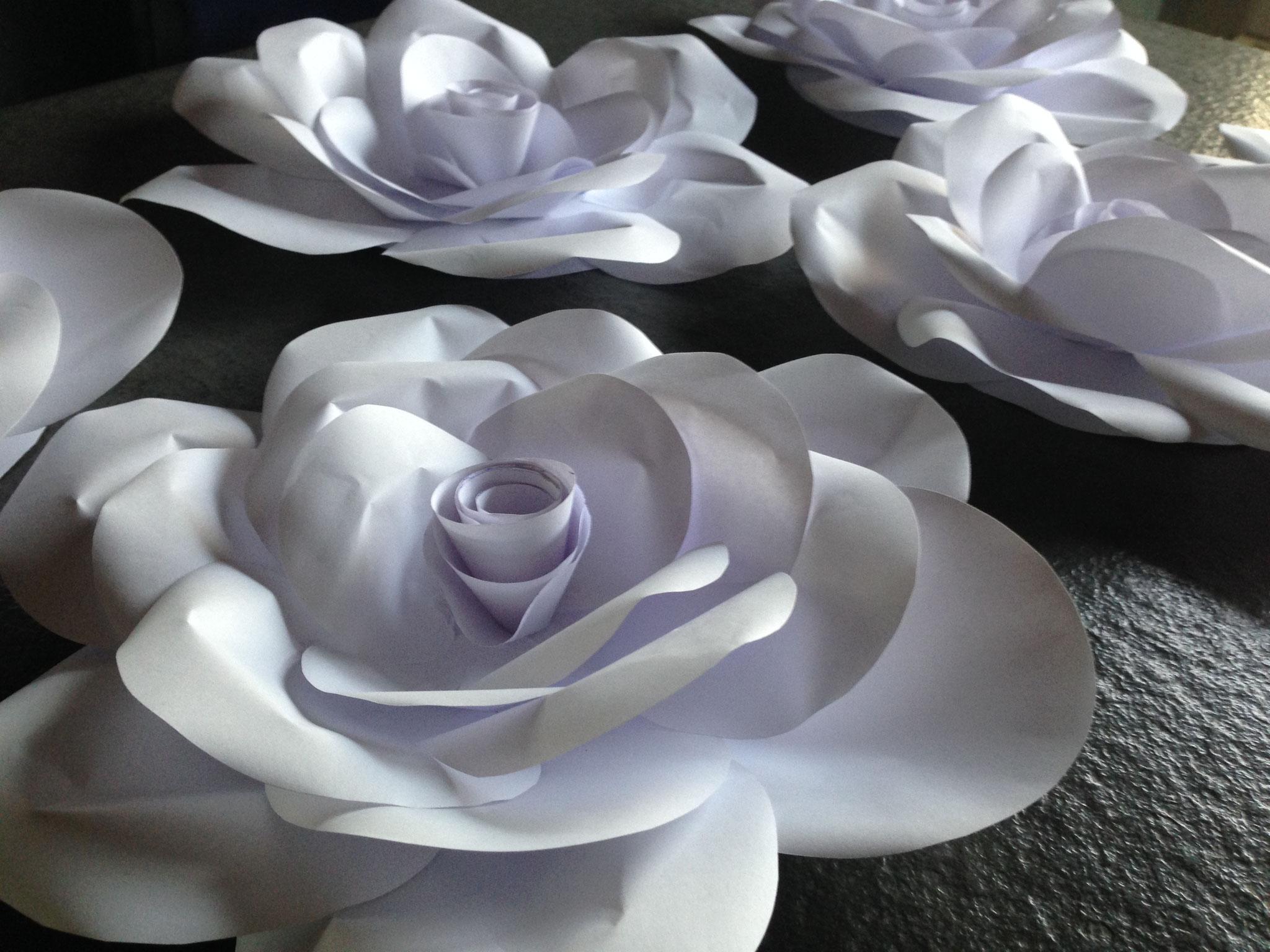 Papier-Rose