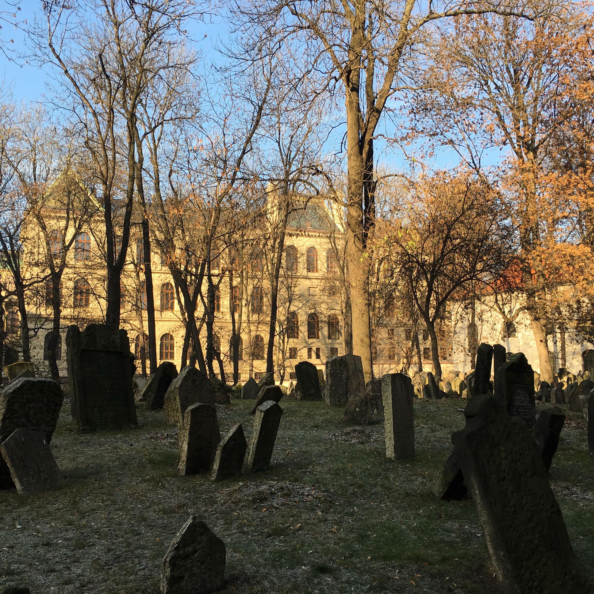 alter, jüdischer Friedhof