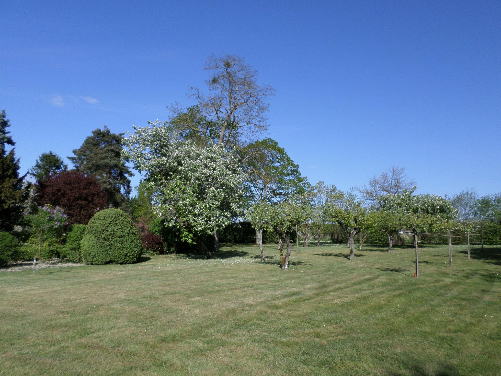 Jardin privatif gîte