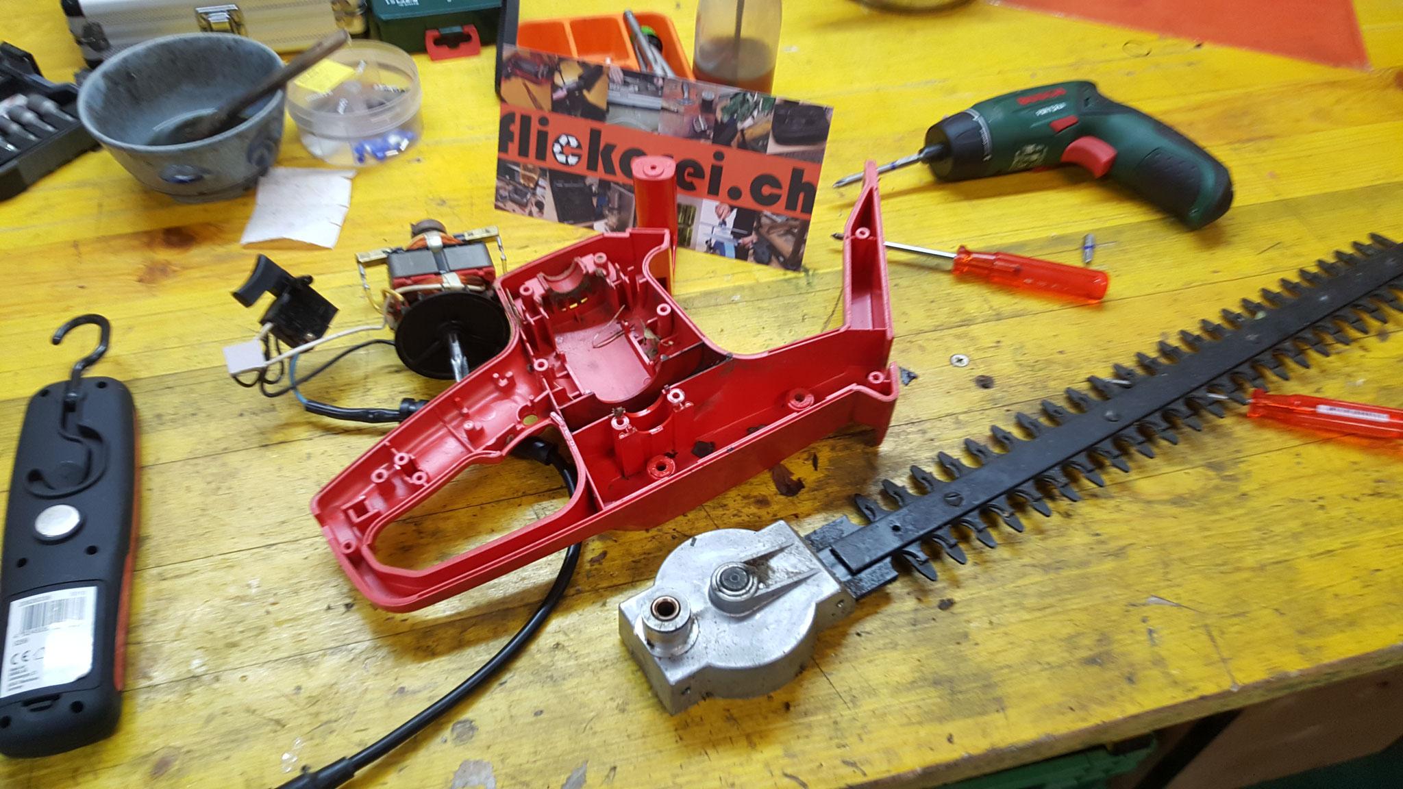 elektrische Heckenschere reparieren