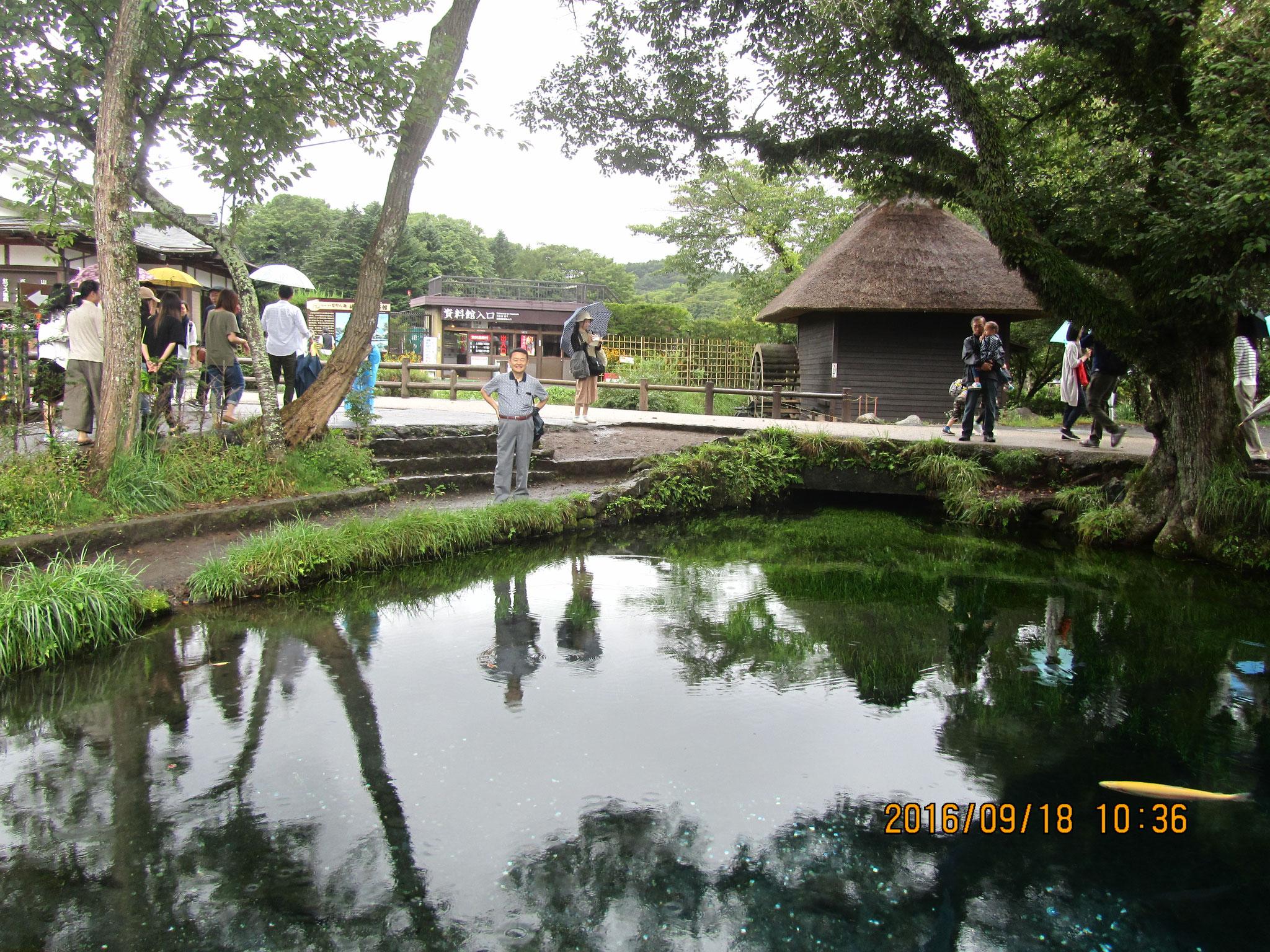 湧池(わくいけ)。忍野八海を代表する池です。昔、富士山が噴火した際、人々はすべてを焼き尽くす熱に襲われました。喉の渇きや火事を消すために人々が水を求めて叫びました。