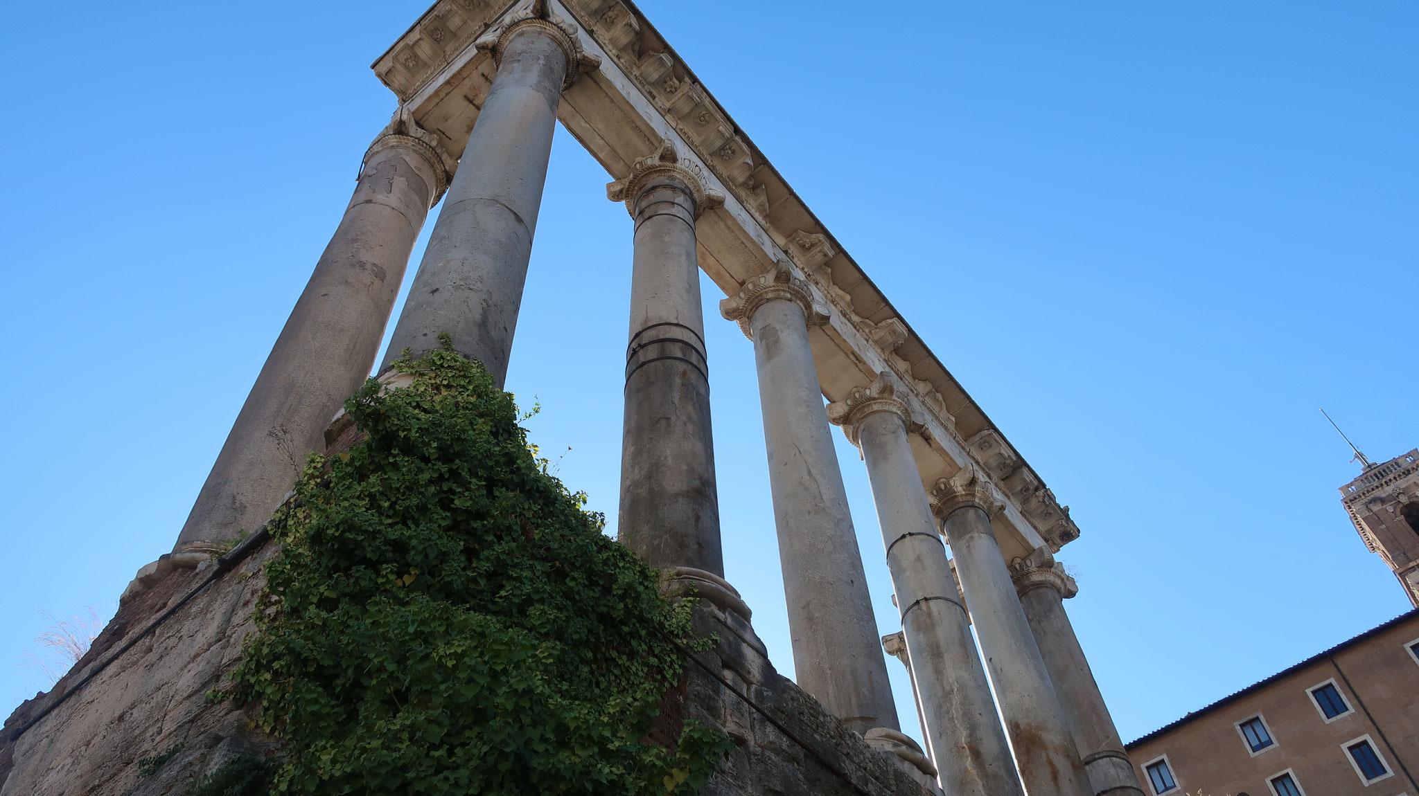 サトゥルヌス(ローマの農業神)の神殿。国家の財宝がここに収められました。