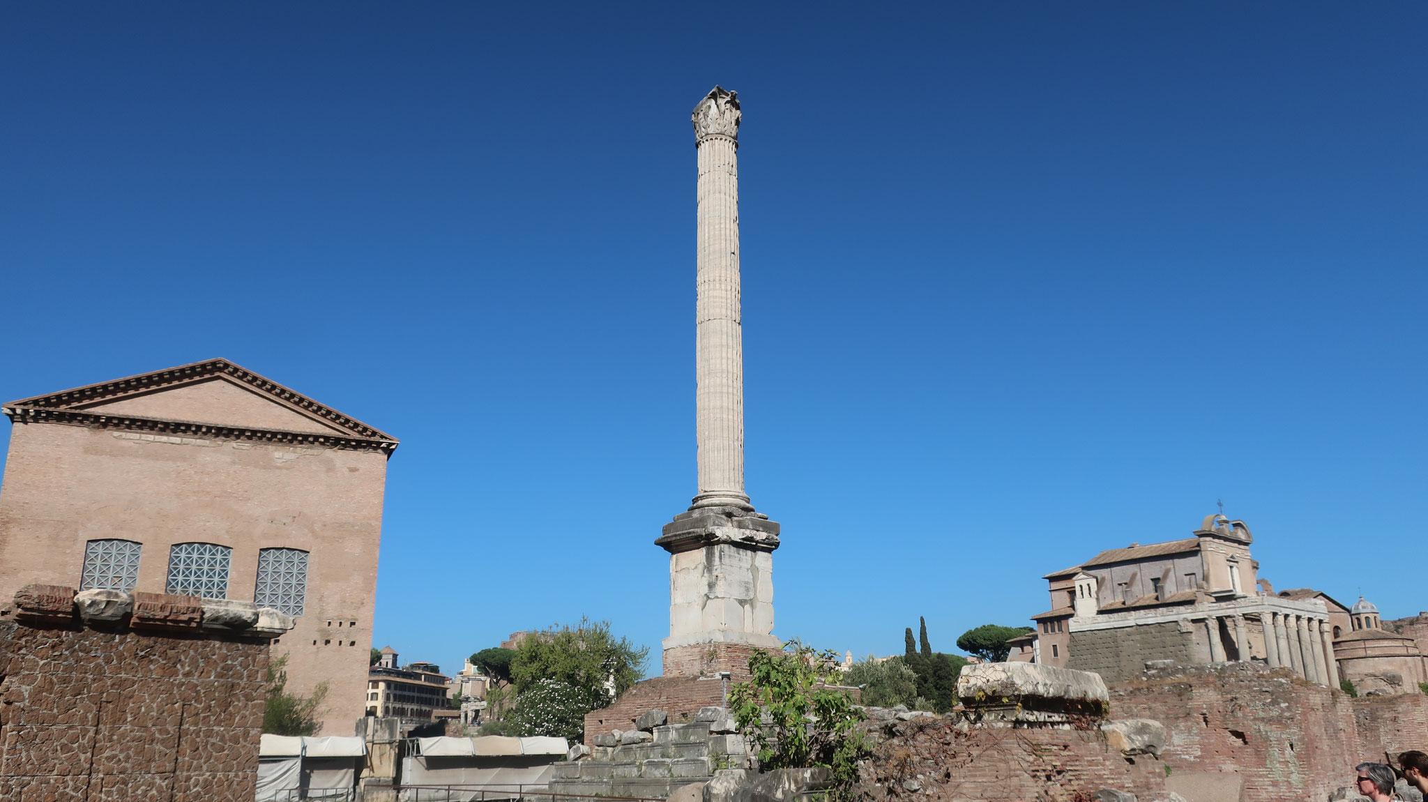 フォカス帝の記念柱
