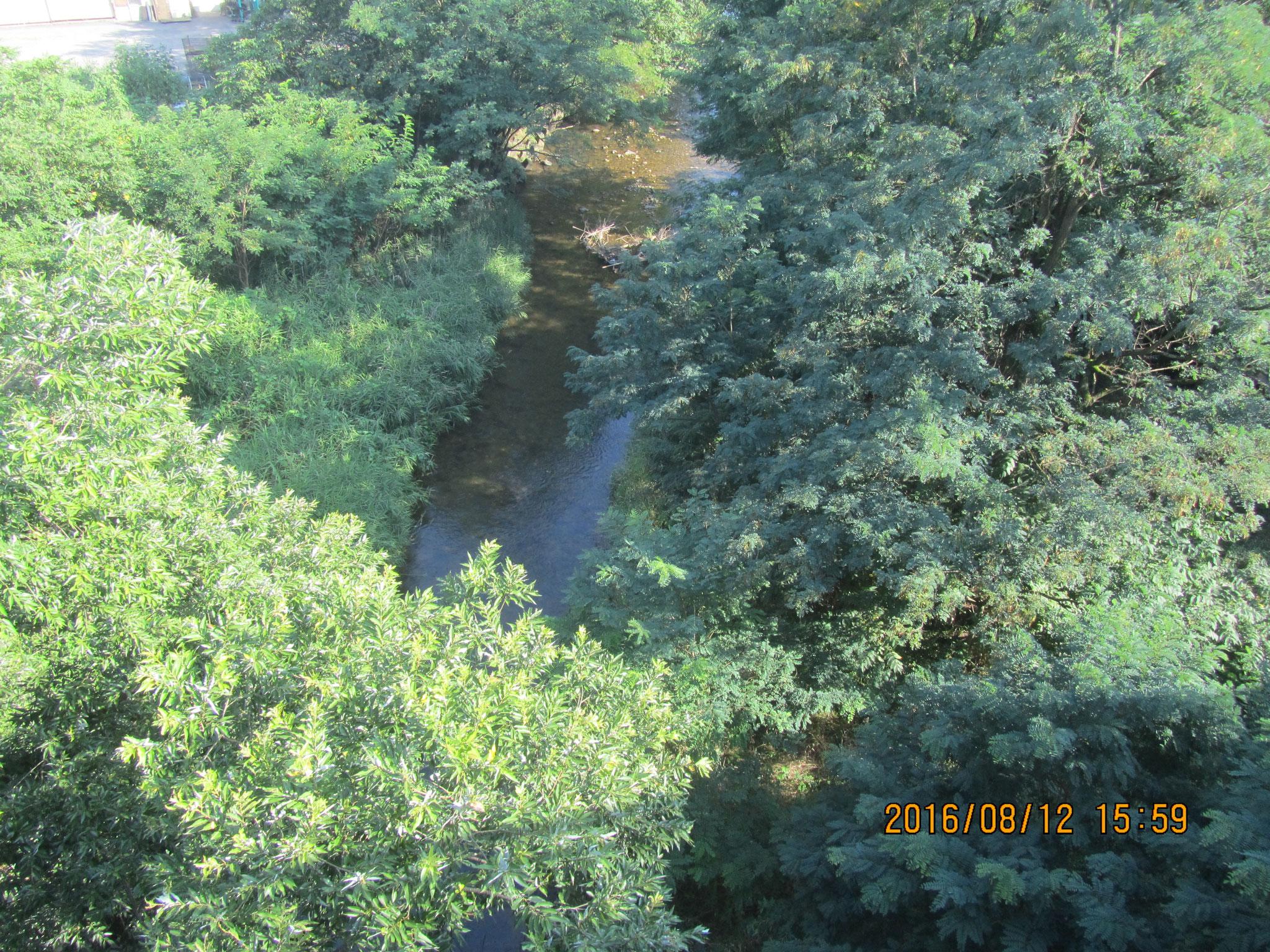 神川(かんがわ)。1585年、第一次上田合戦の際、真田信幸がこの川をせき止めました。そして、上田城から徳川軍が敗走する際に堰(せき)を壊し、川を渡る多くの兵を溺れさせたのです。
