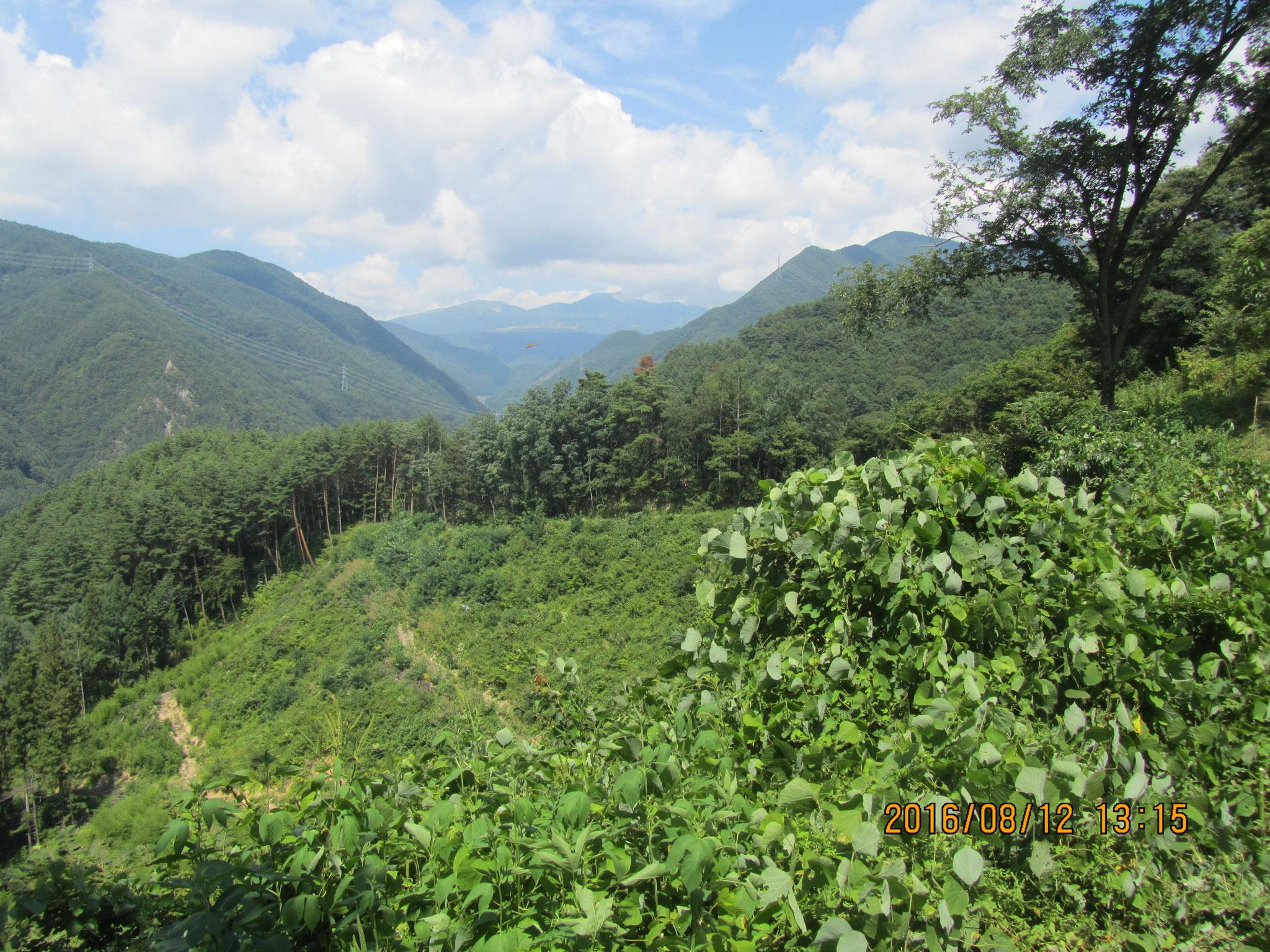山頂から真田郷を望む。
