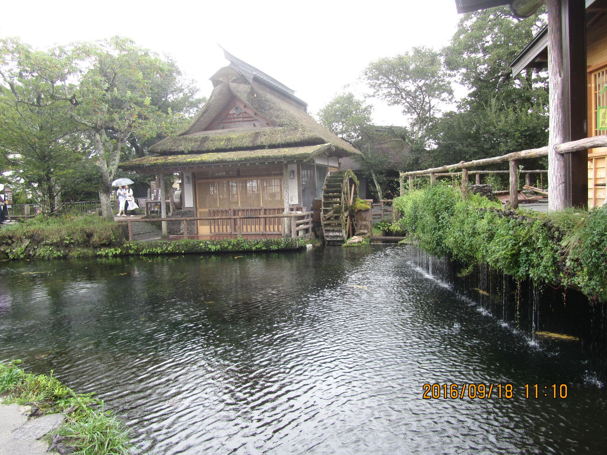 鏡池(かがみいけ)。この水には善悪を見分ける霊力があります。昔から、部落内で争いが起きれば、双方がこの池の水を浴びて身を清め祈願すると解決したそうです。