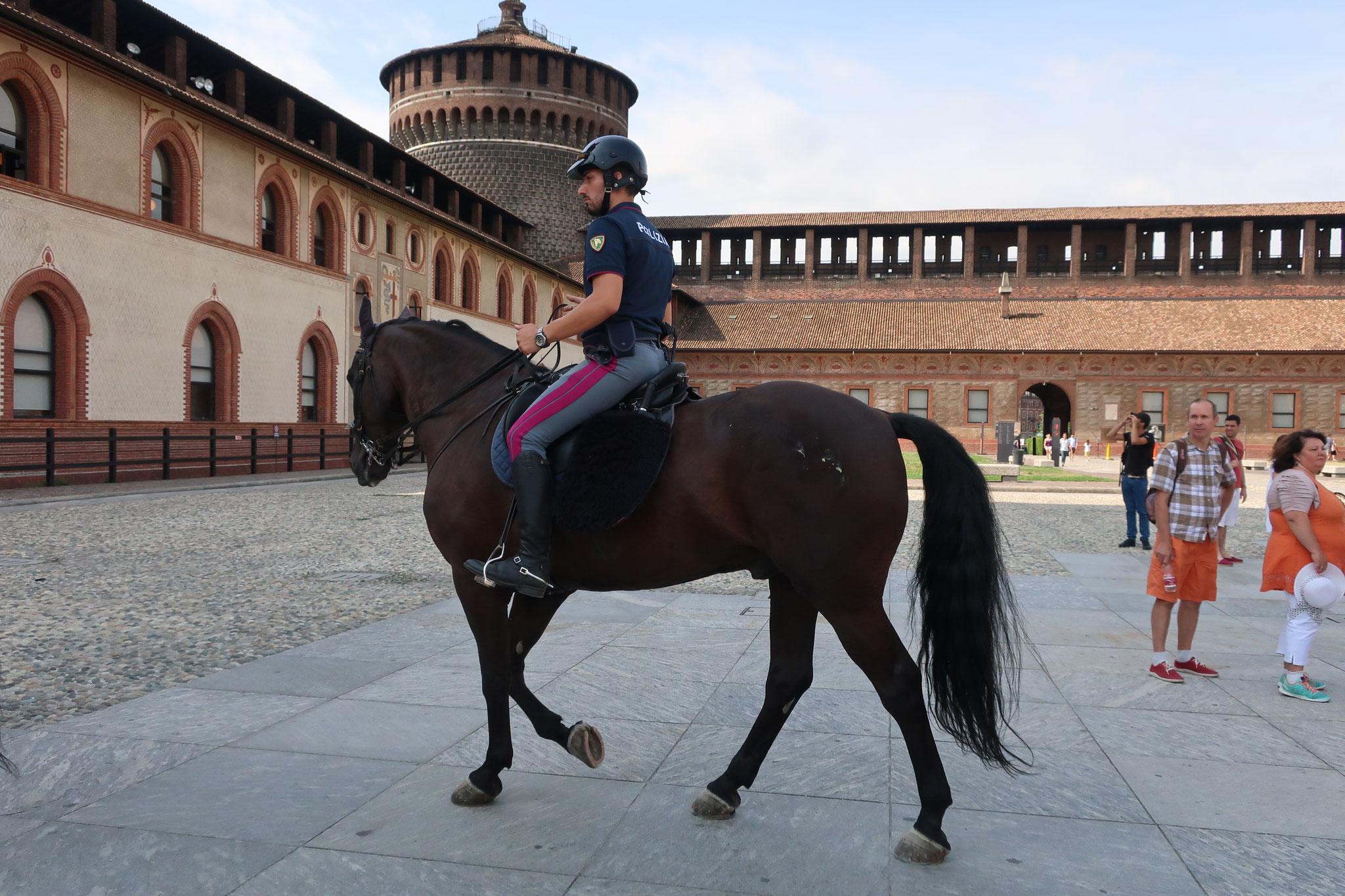 かつての領主ヴィスコンティ家の城跡にフランチェスコ・スフォルツァ公爵が1466年に建築しました。