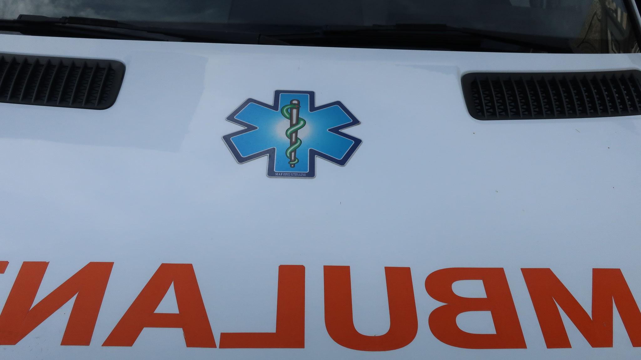 日本の救急車と同じく、「アスクレピオスの杖」のマークです。