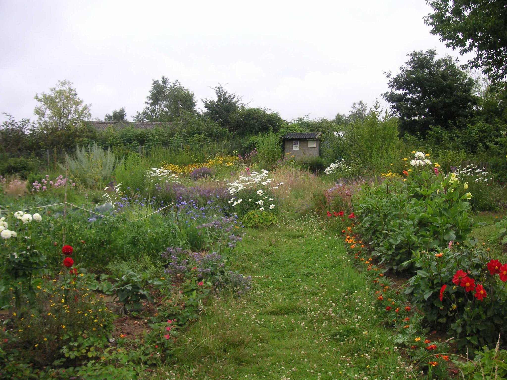 Blick vom Eingangstor in den NABUnten Garten zur Wiese hin,  Quelle: Gisela Wartenberg