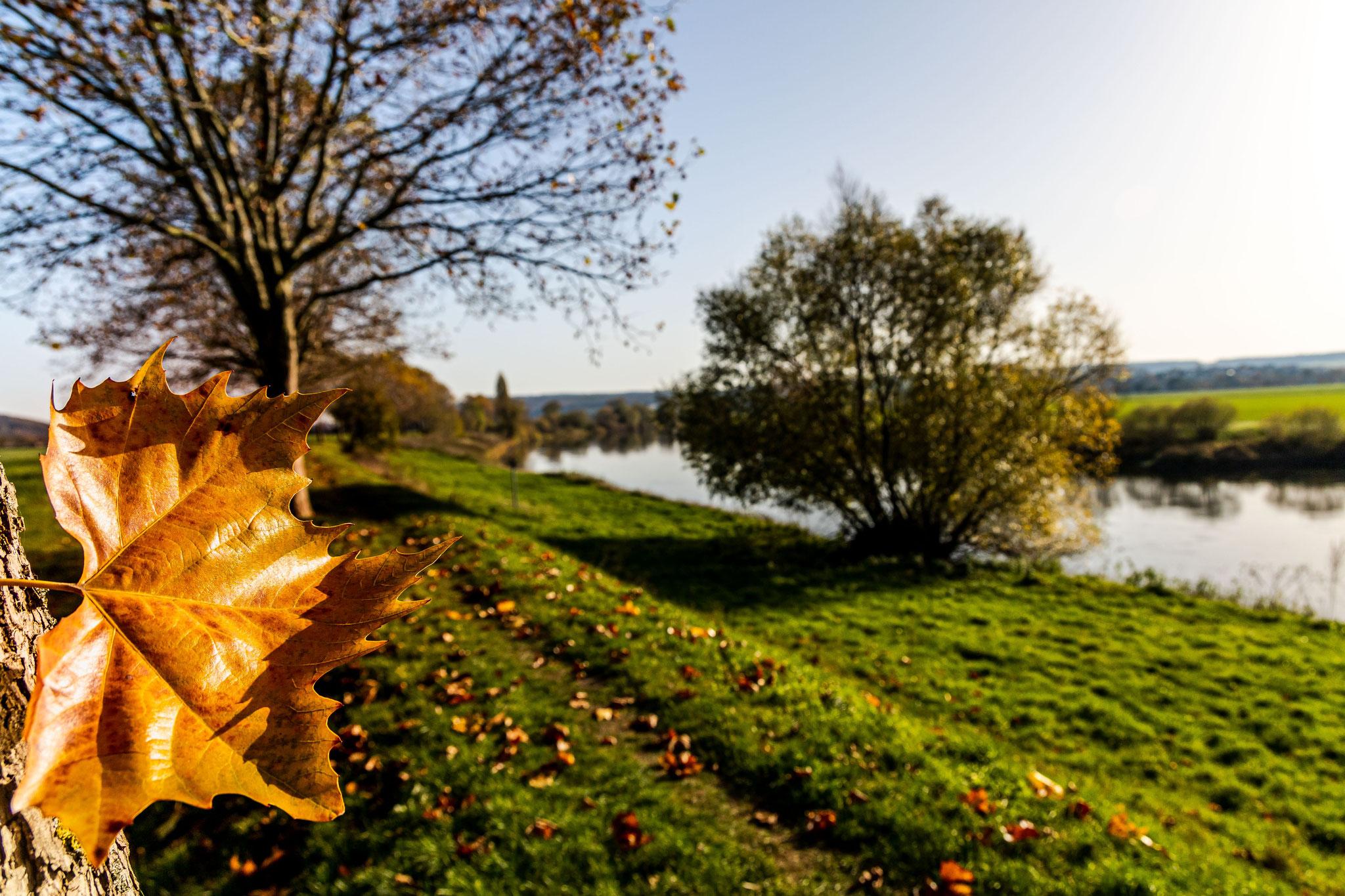 Herbsttour am Weserufer