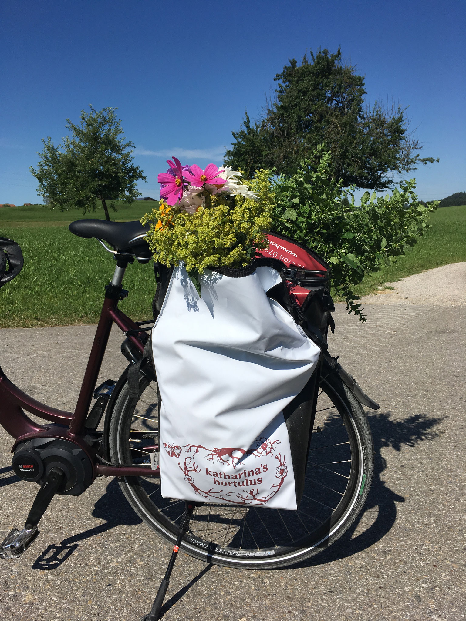 Gut beladen mein Fahrrad Tour de Suisse