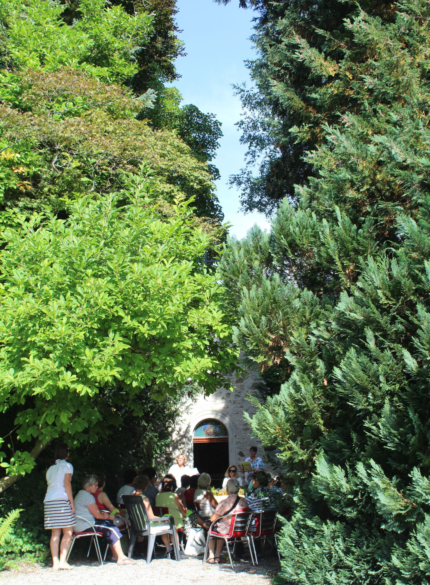 Andacht und Besinnung bei der ehrwürdigen Zypresse