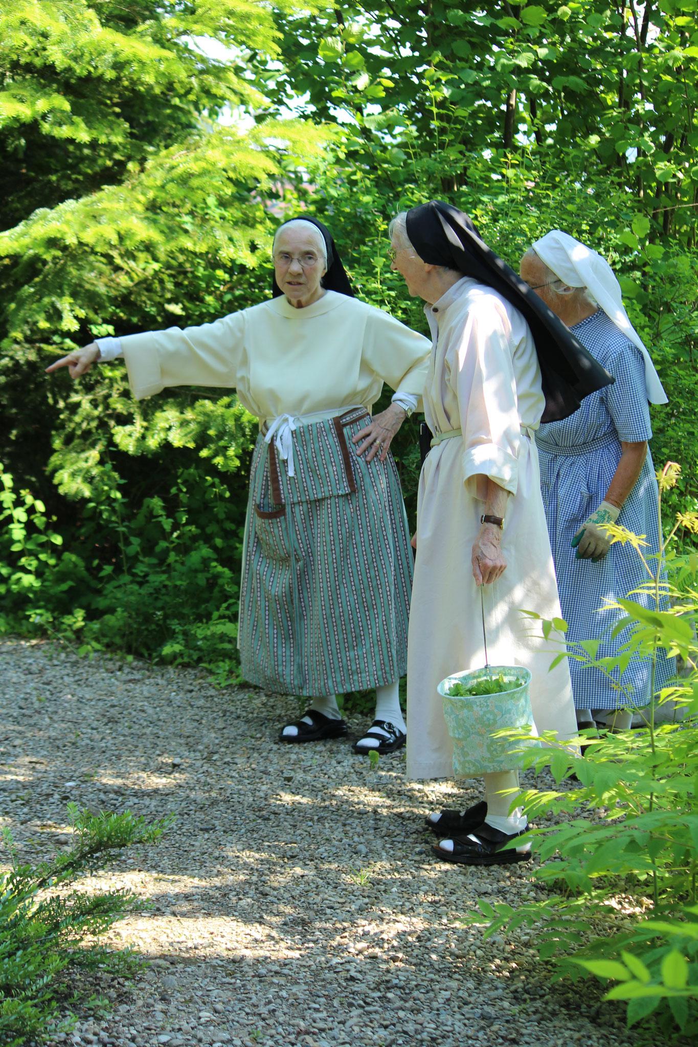 Die Schwestern im Klosterwäldli