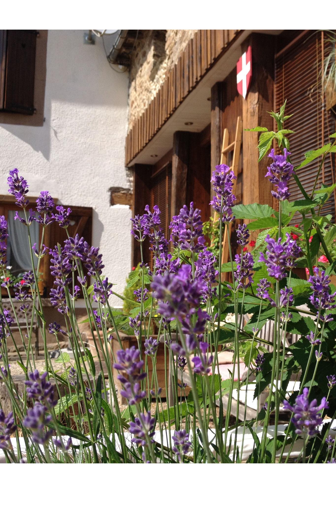 Chambres d h´tes Aveyron Cœur de Bastié