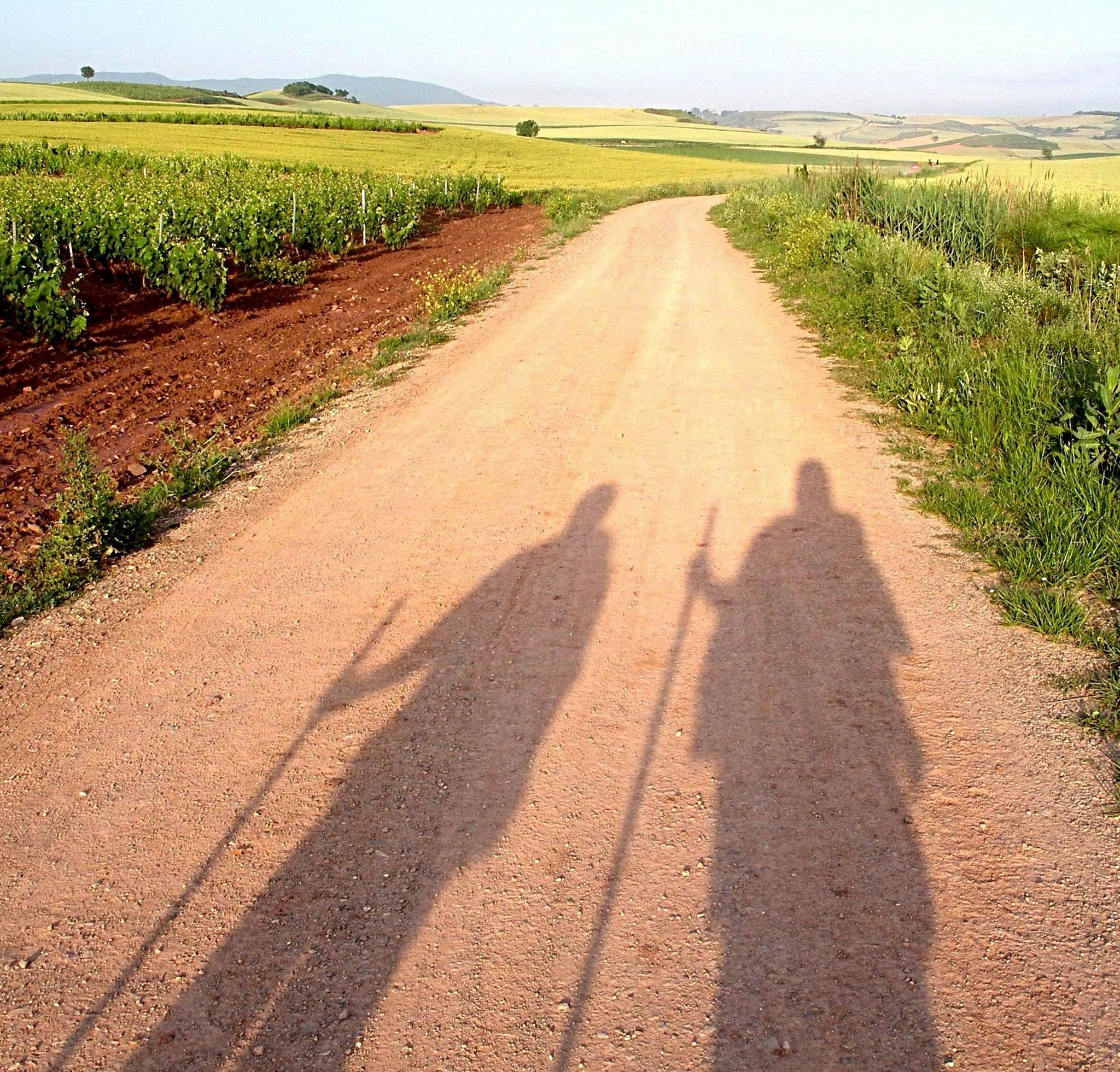 Unsere Wege, unsere Schatten in der Weinregion La Rioja