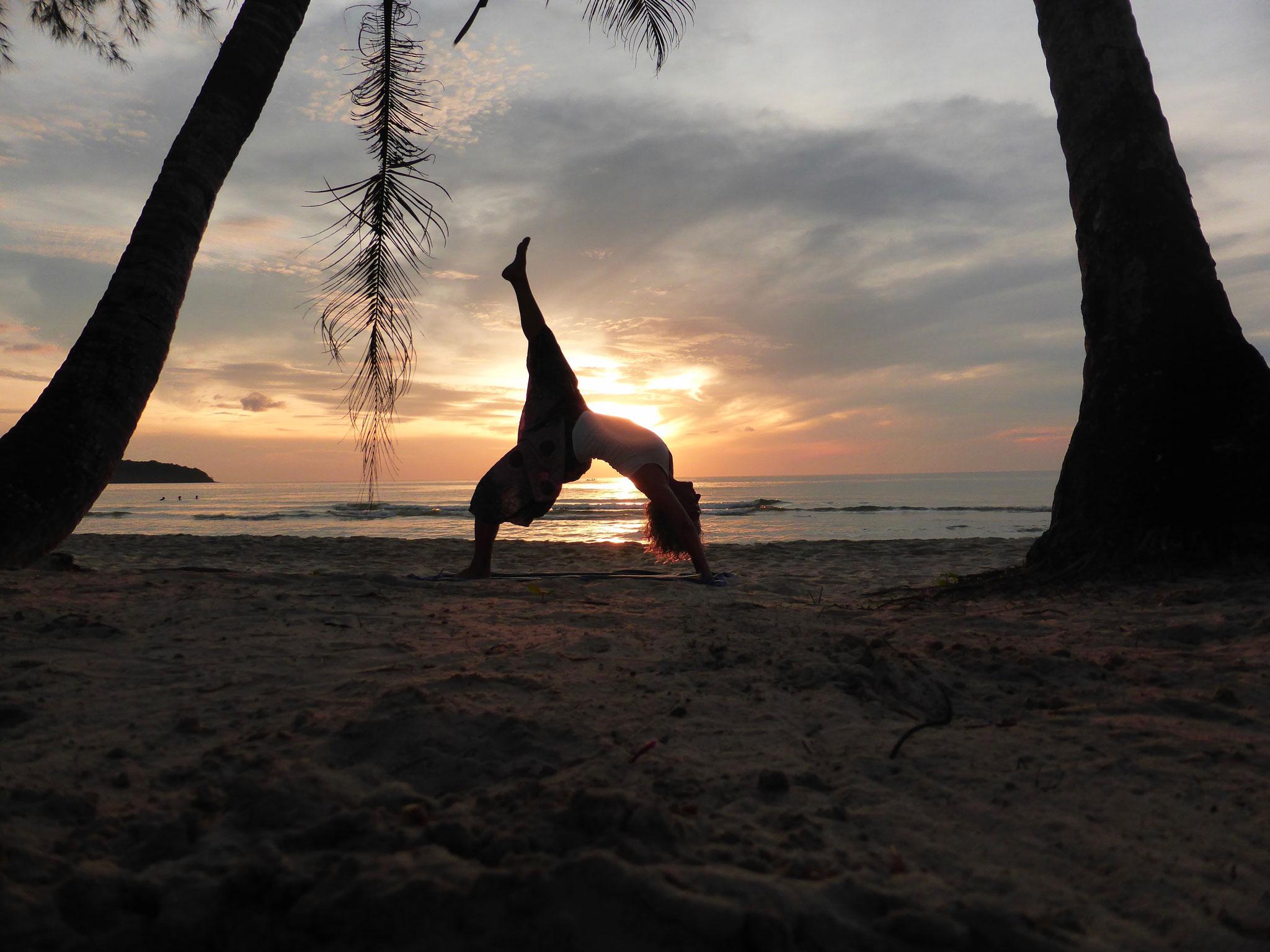 Yoga ist wie Musik. Der Rhythmus des Körpers, die Melodie des Lebens und die Harmonie der Seele erzeugen die Symphonie des Lebens   B.K.S Iyengar