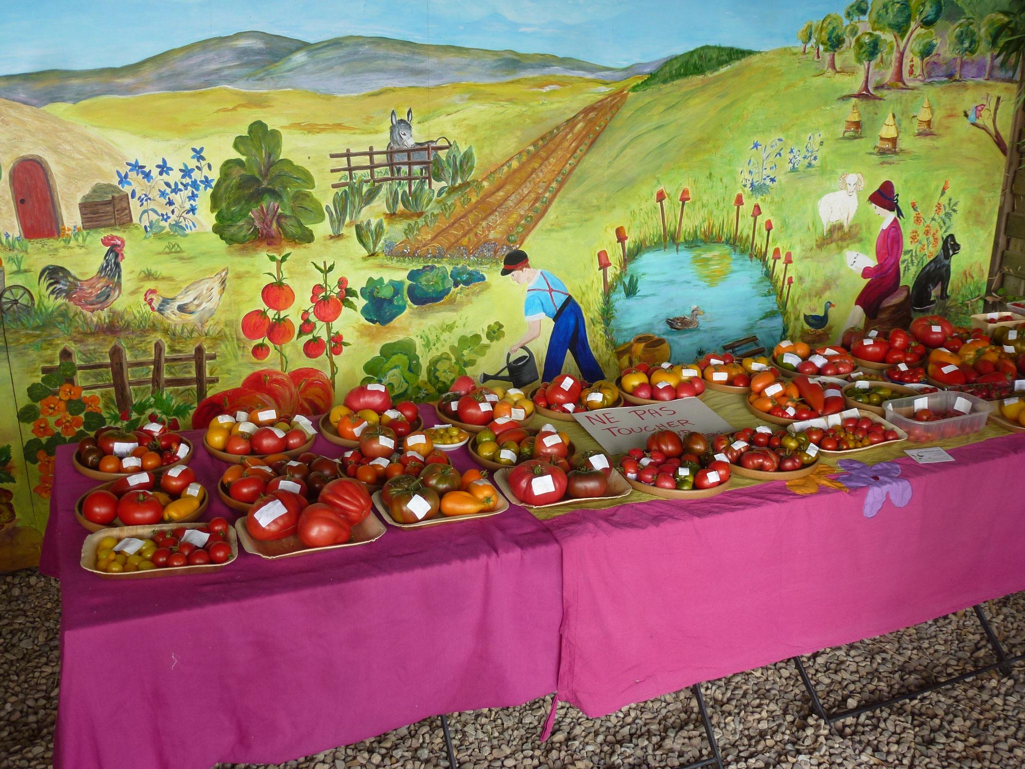 Exposition des tomates devant la fresque du jardin